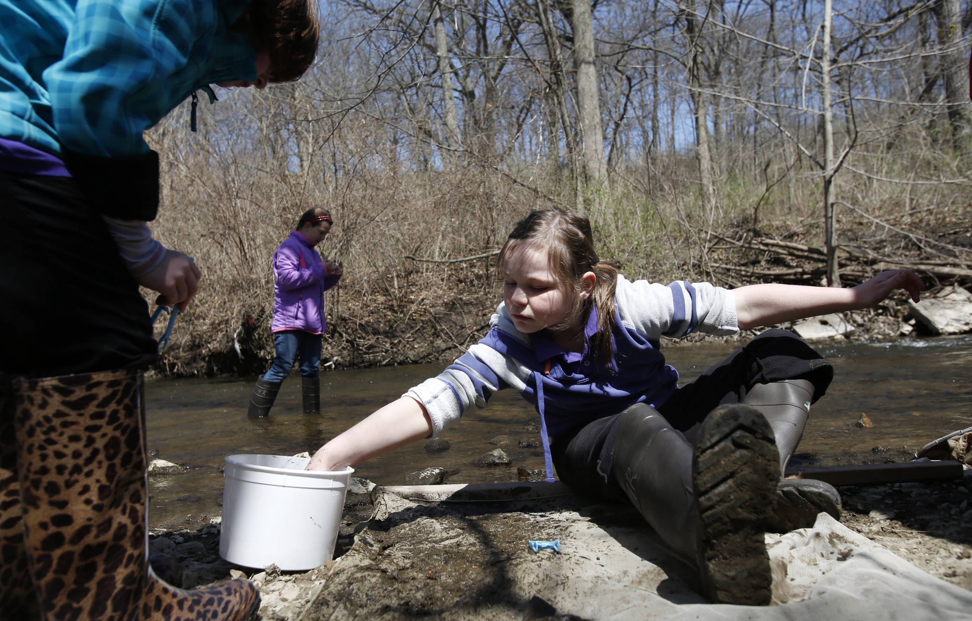 Einstein Academy third-grader Andrea Rathjen of Elgin works on specimens she collected with classmates Tuesday at the Tyler Creek Forest Preserve in Elgin. Looking over her work is second-grade classmate Jordan Merlo of Bartlett, as third-grader Annabel Ehreth of Elgin walks the creek in the background. Einstein Academy students spend a day studying Tyler Creek each Earth Day, in partnership with the Friends of the Fox River organization, to help monitor the health of the stream.