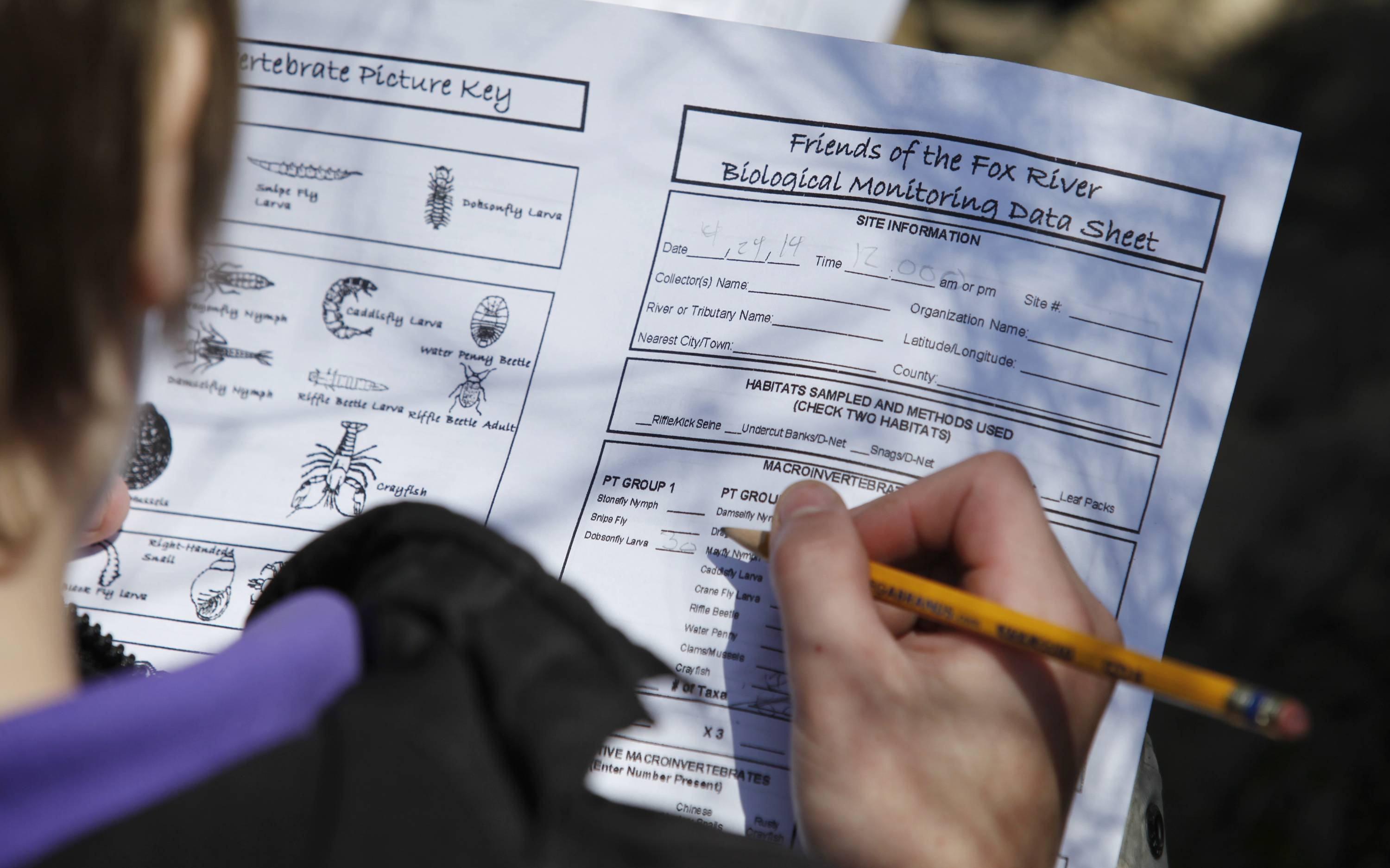 An Einstein Academy student fills out a work sheet describing the biological data he and classmates collected Tuesday from Tyler Creek in Elgin. Einstein Academy students spend a day studying Tyler Creek each Earth Day, in partnership with the Friends of the Fox River organization, to help monitor the health of the stream.