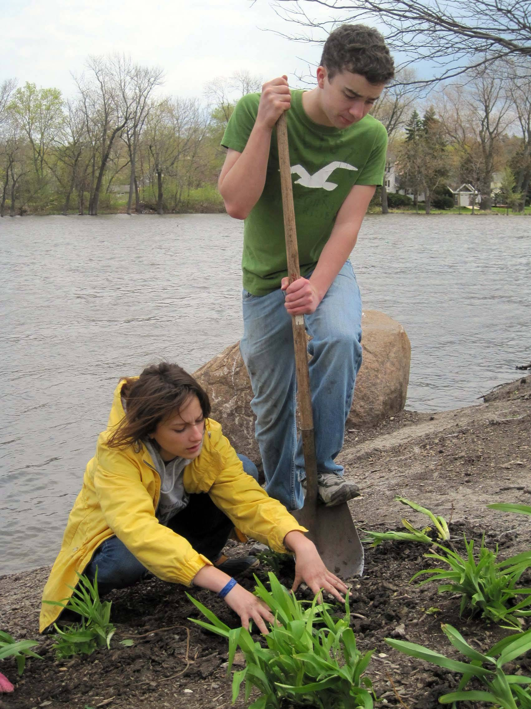 "Sara Tompkins, left, and Jeff Marschke, both students at Dundee-Crown High School in Carpentersville, plant hostas during a ""planting party"" for Earth Day/Arbor Day along First Street by the Fox River in downtown West Dundee."