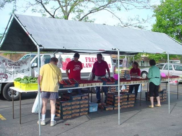 Customers shop for fresh fruits and vegetables at a Lions Club Farmers Market. The market is just one of the many events hosted annually by the Mount Prospect Lions.
