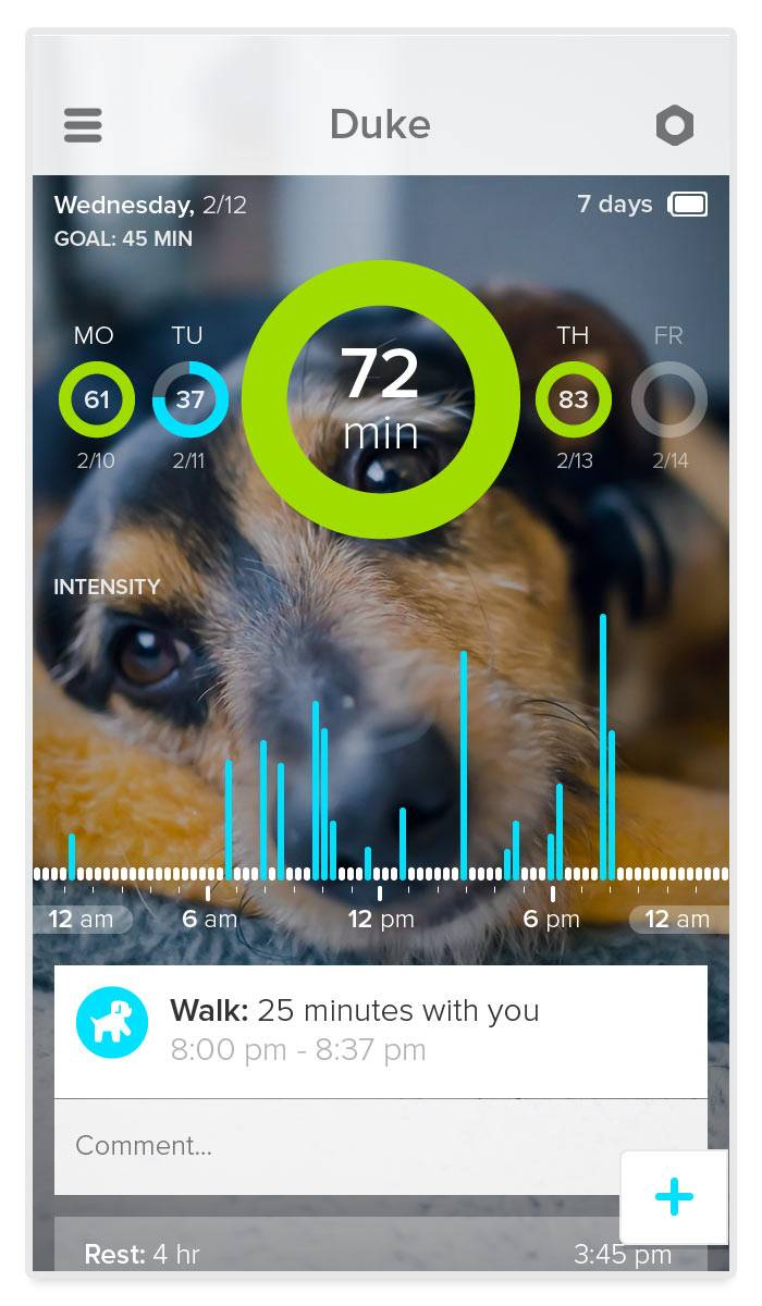 The Whistle app that is used in conjunction with a new device, called Whistle, that lets pet owners track how much exercise -- or sleep -- their four-legged friends are getting.