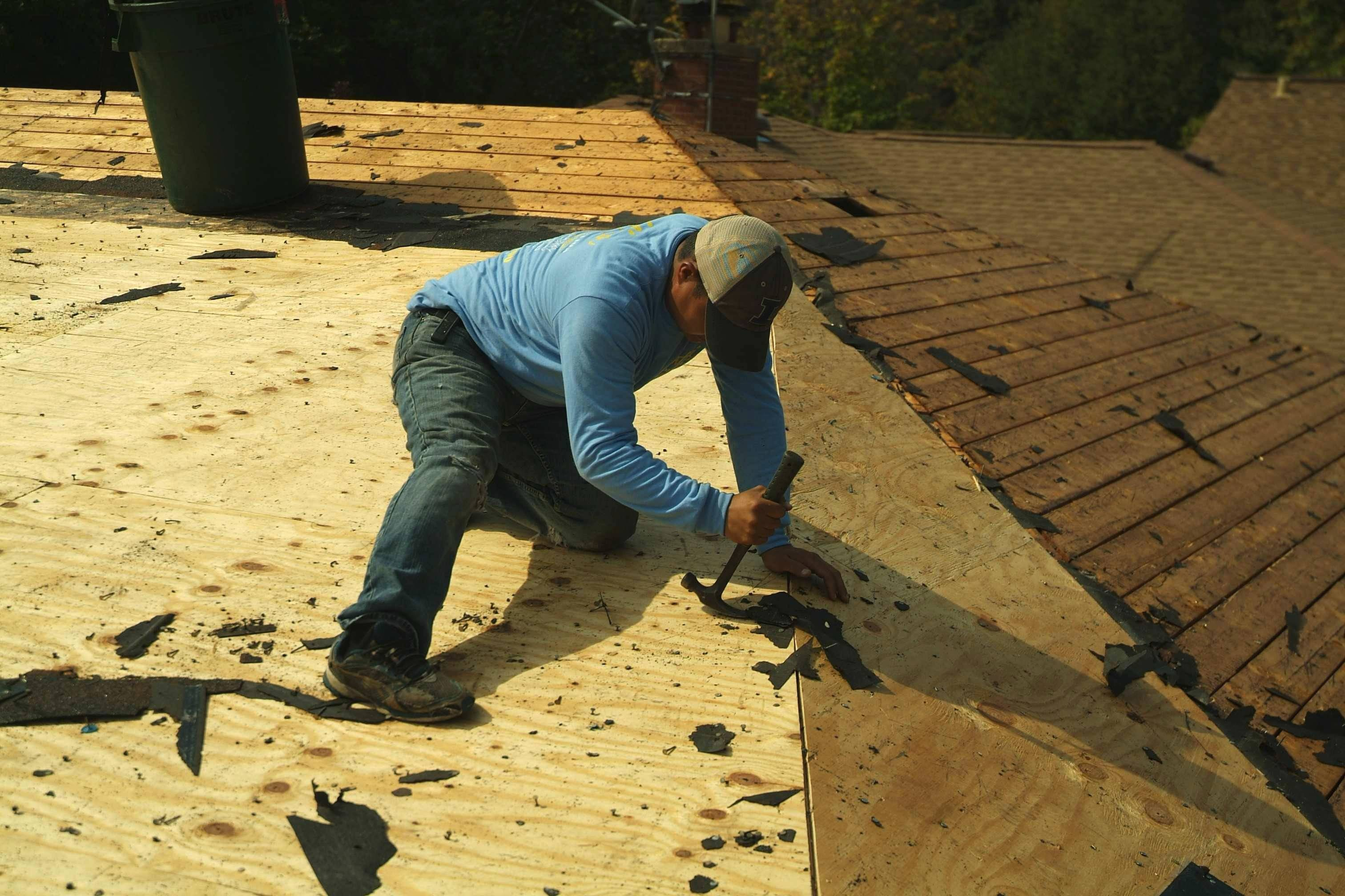 After all of the old shingles have been removed, roofers use claw hammers to remove any remaining nails.