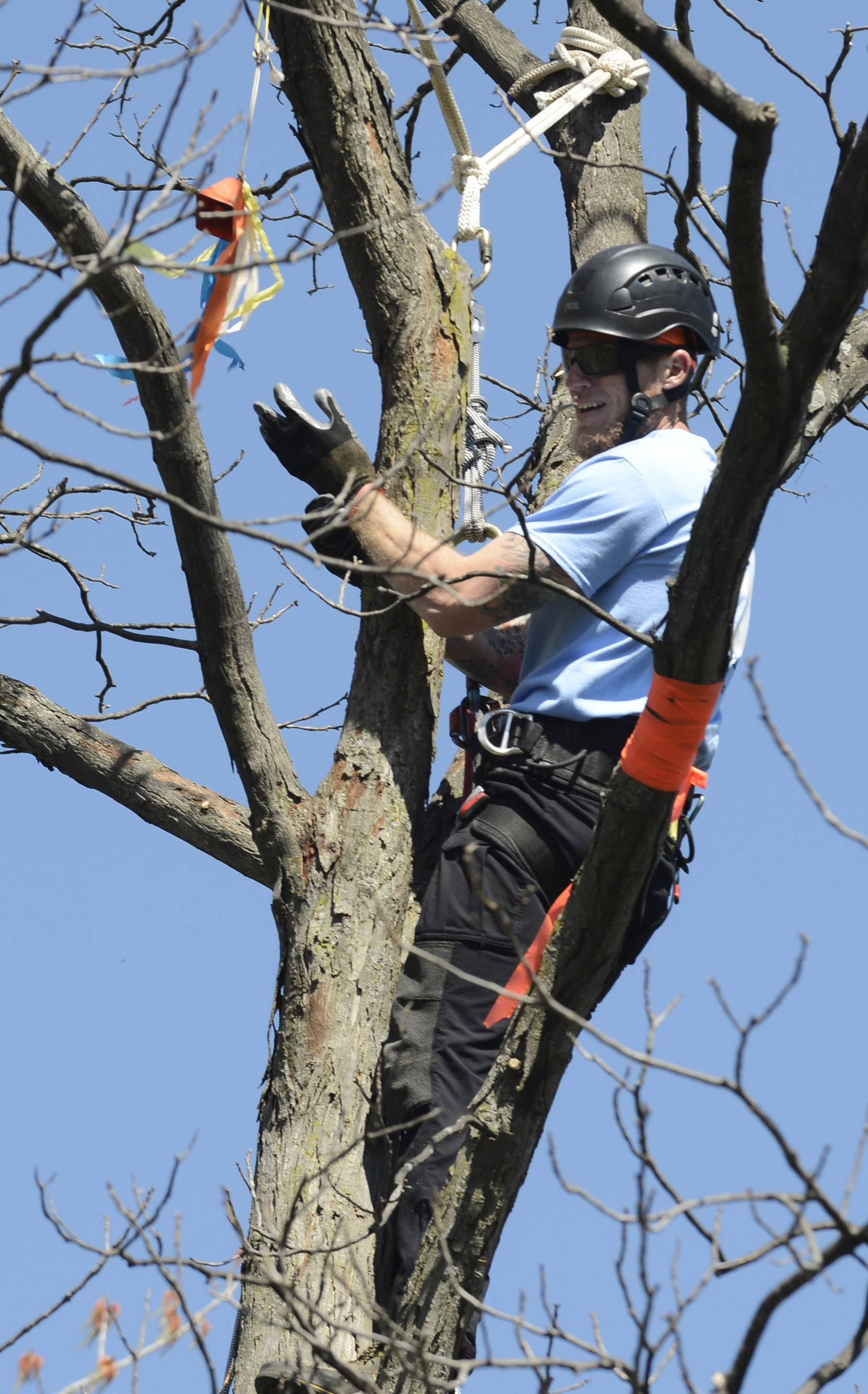 Jermy Dunivan of Infantree LLC, of Belleville, Ill., smiles after ringing the bell near the top of a tree while competing in the Belayed Speed Climb event Saturday during the Illinois Arborist Tree Climbing Championship held at Independence Grove near Libertyville.