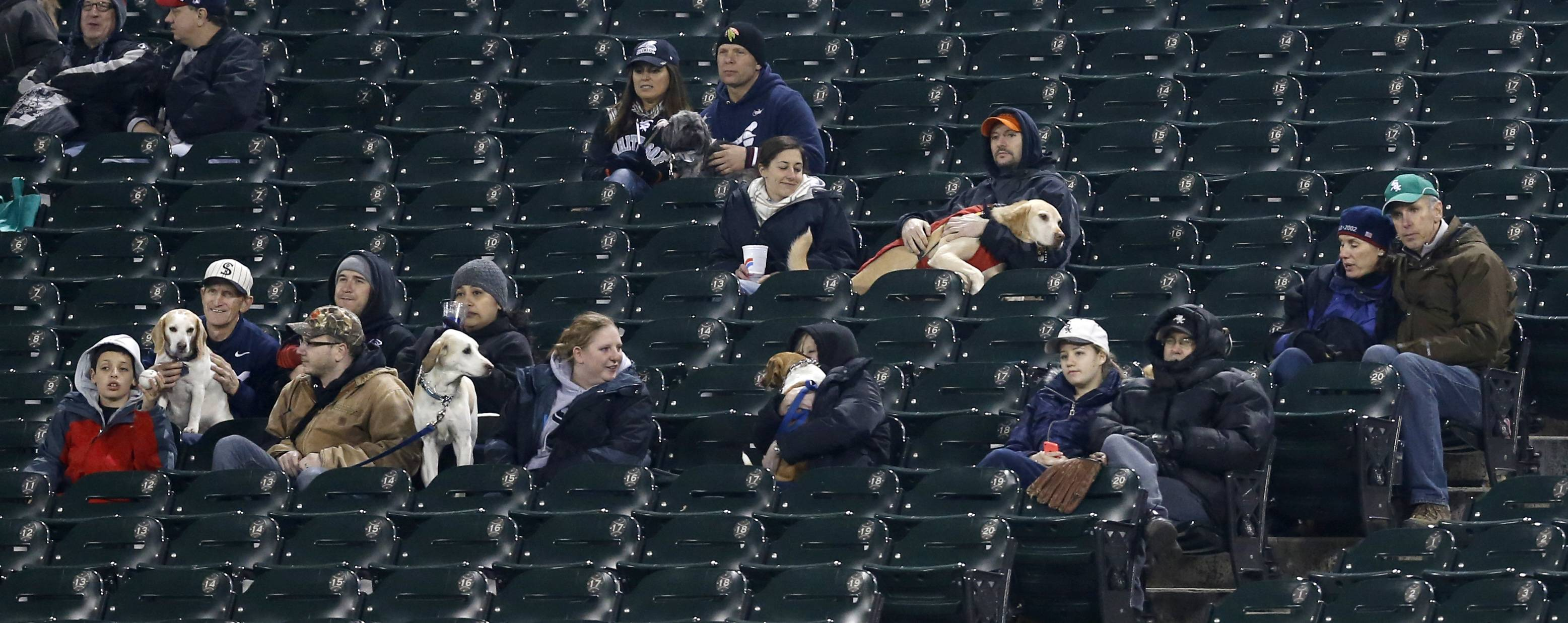 Baseball fans sit in the outfield seats with their dogs at Dog Days during the fourth inning of a baseball game between the Chicago White Sox and the Tampa Bay Rays Monday, April 28, 2014, in Chicago.