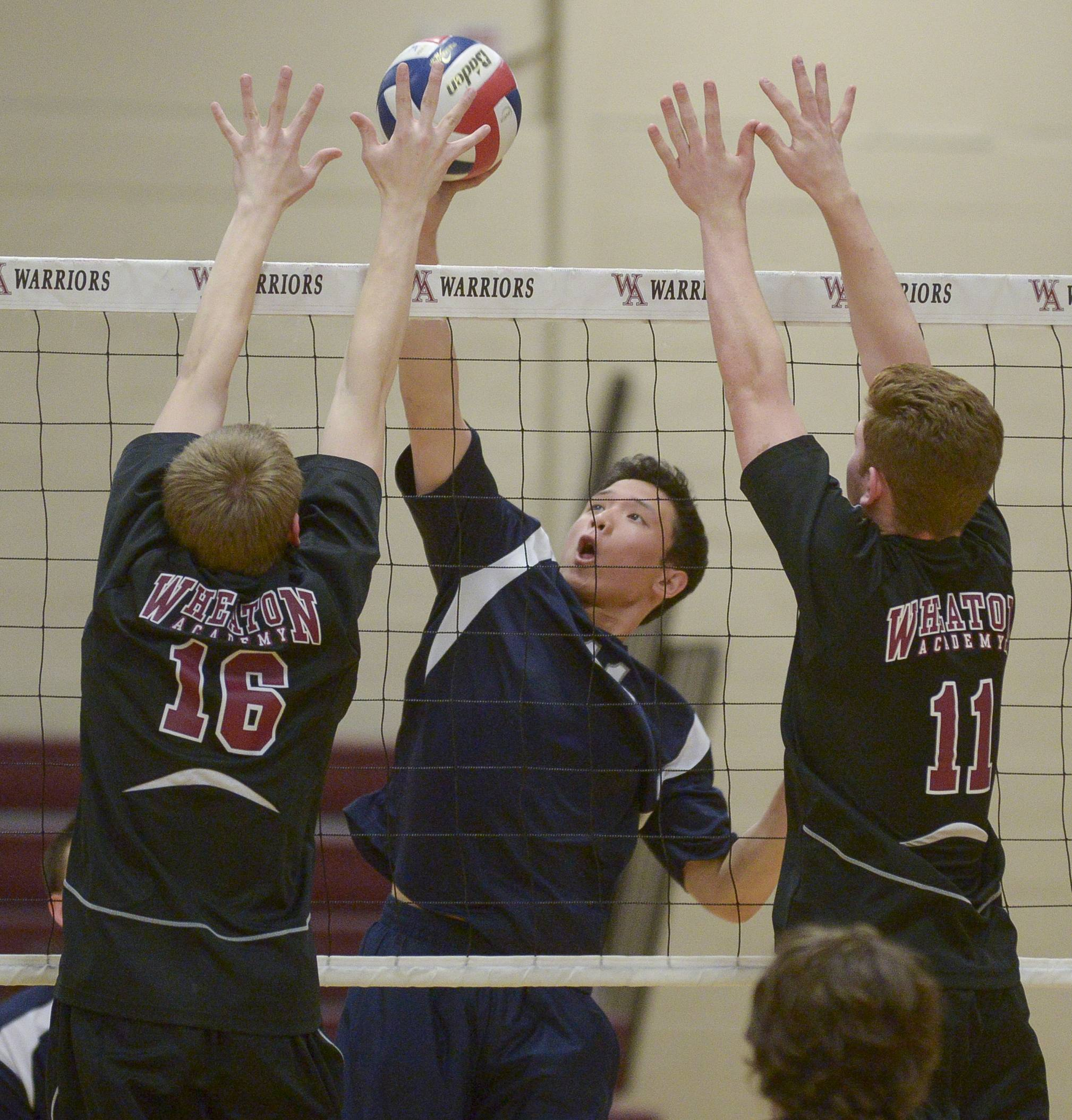 IMSA's Earl Mangulabnan fires one past Wheaton Academy's Soren Johnson and Kevin Esposito during boys volleyball in West Chicago Monday.