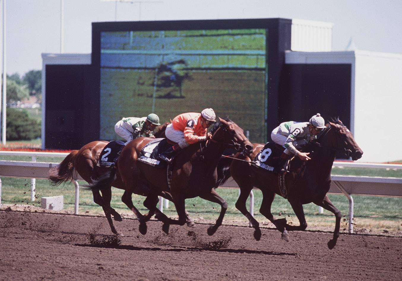 Horses race on the track on the grand opening of new Arlington International Racecourse in  July, 1989.