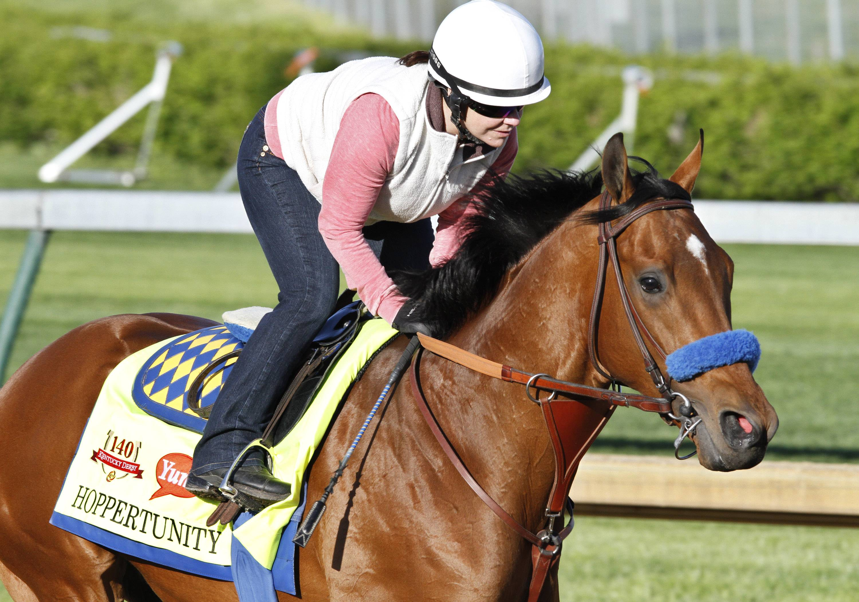 FILE- In this April 26, 2014, exercise rider Dana Barnes gallops Kentucky Derby hopeful Hoppertunity at Churchill Downs in Louisville, Ky.  Hoppertunity, the second favorite for the Kentucky Derby, is out of the race.  Trainer Bob Baffert says the colt has a sore left front foot.