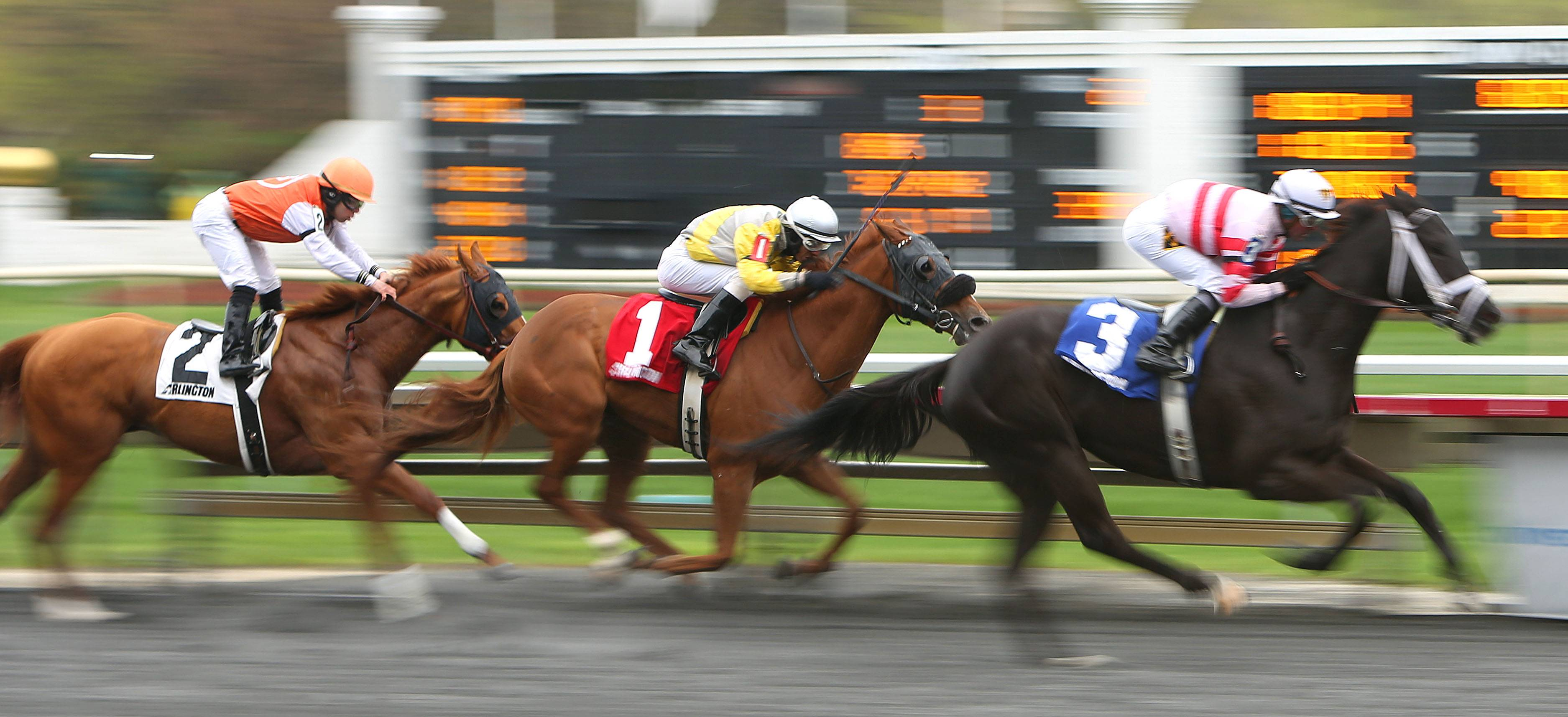 Horses race to the finish during opening day at Arlington International Racecourse.