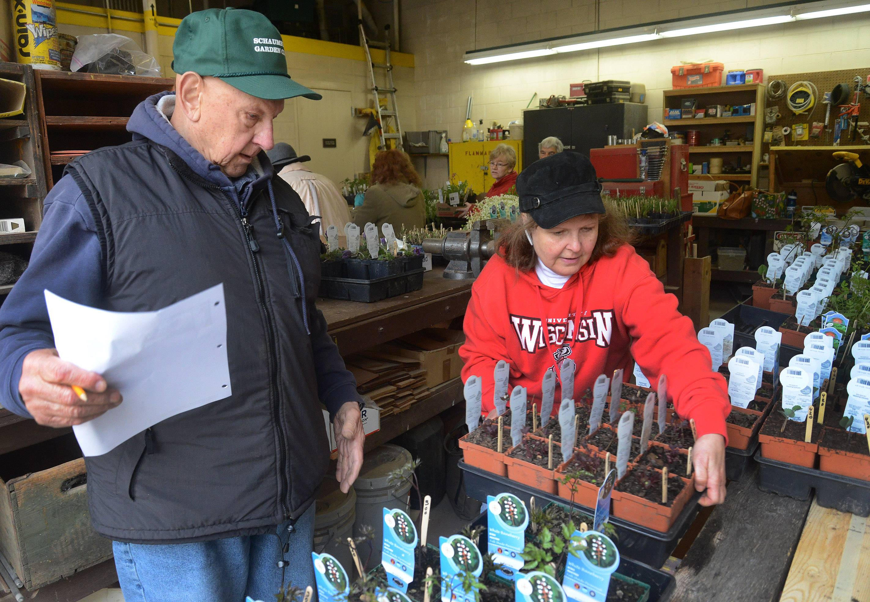 Fred Wittner and Carolyn Quinn set out flats of native plants for the Schaumburg Community Garden Club's big weekend sale at Spring Valley Nature Center.