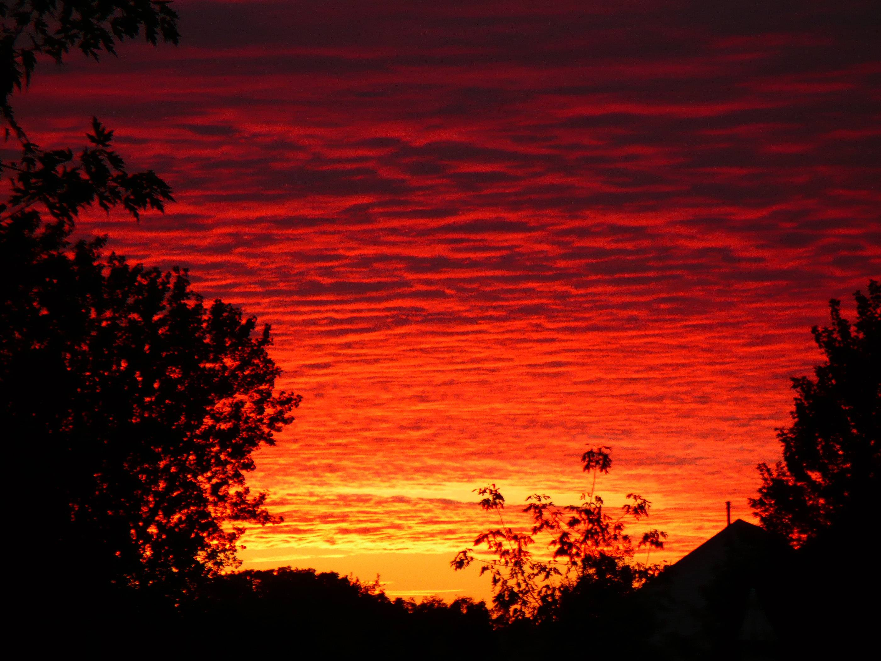 This is one of the most dramatic burning sky sunsets I have ever seen from my own back yard.
