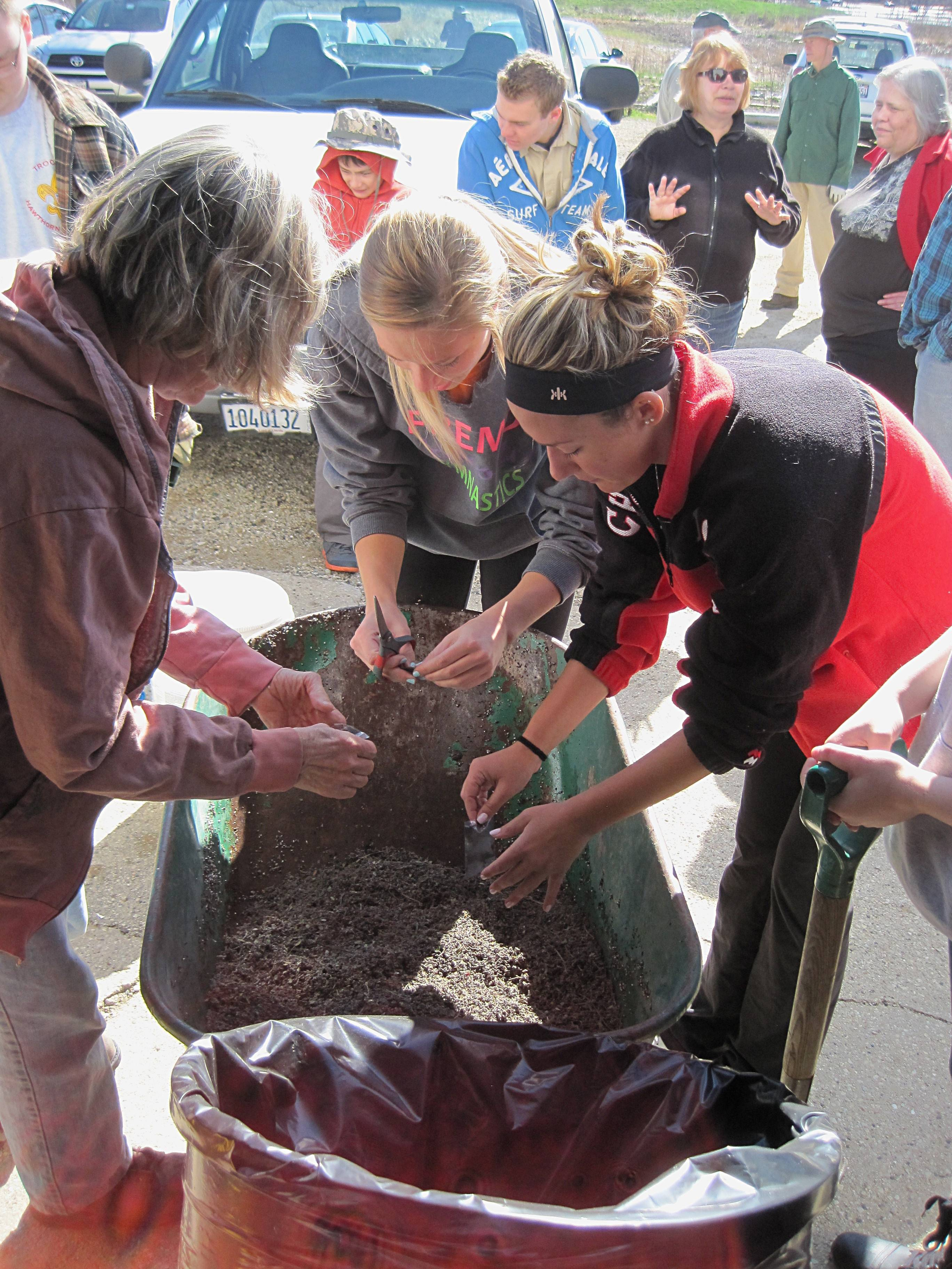 Restoration volunteers prepare legume seed mixes for sowing in the prairie.