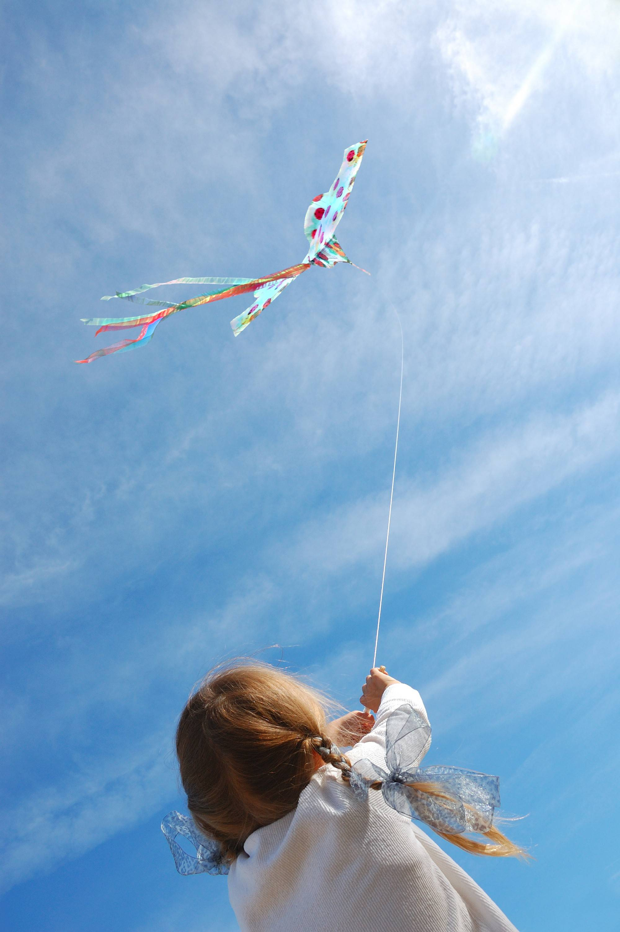 One can fly a kite, make a kite and watch professional kite flyers in action at the Wheaton Park District's Go Fly a Kite! event.