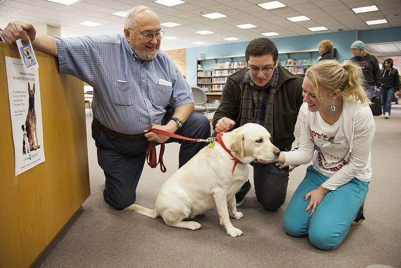 "A therapy dog visits the College of Lake County library in December 2013. Even more dogs will visit the college in early May during ""Dog Gone Stress."""