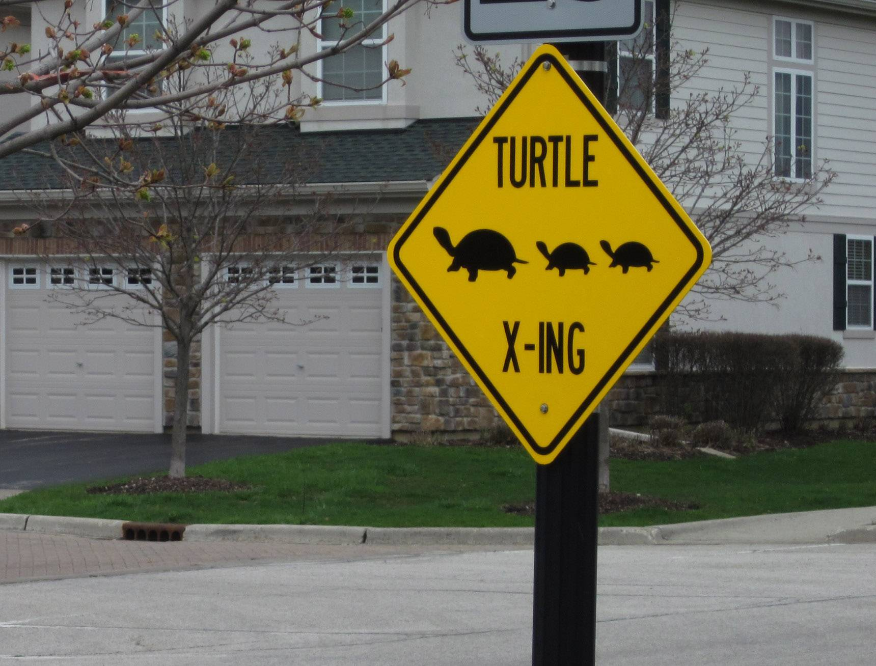 Vernon Hills has put up a temporary turtle crossing sign on Hazeltime Drive in the upscale Greggs Landing subdivision.