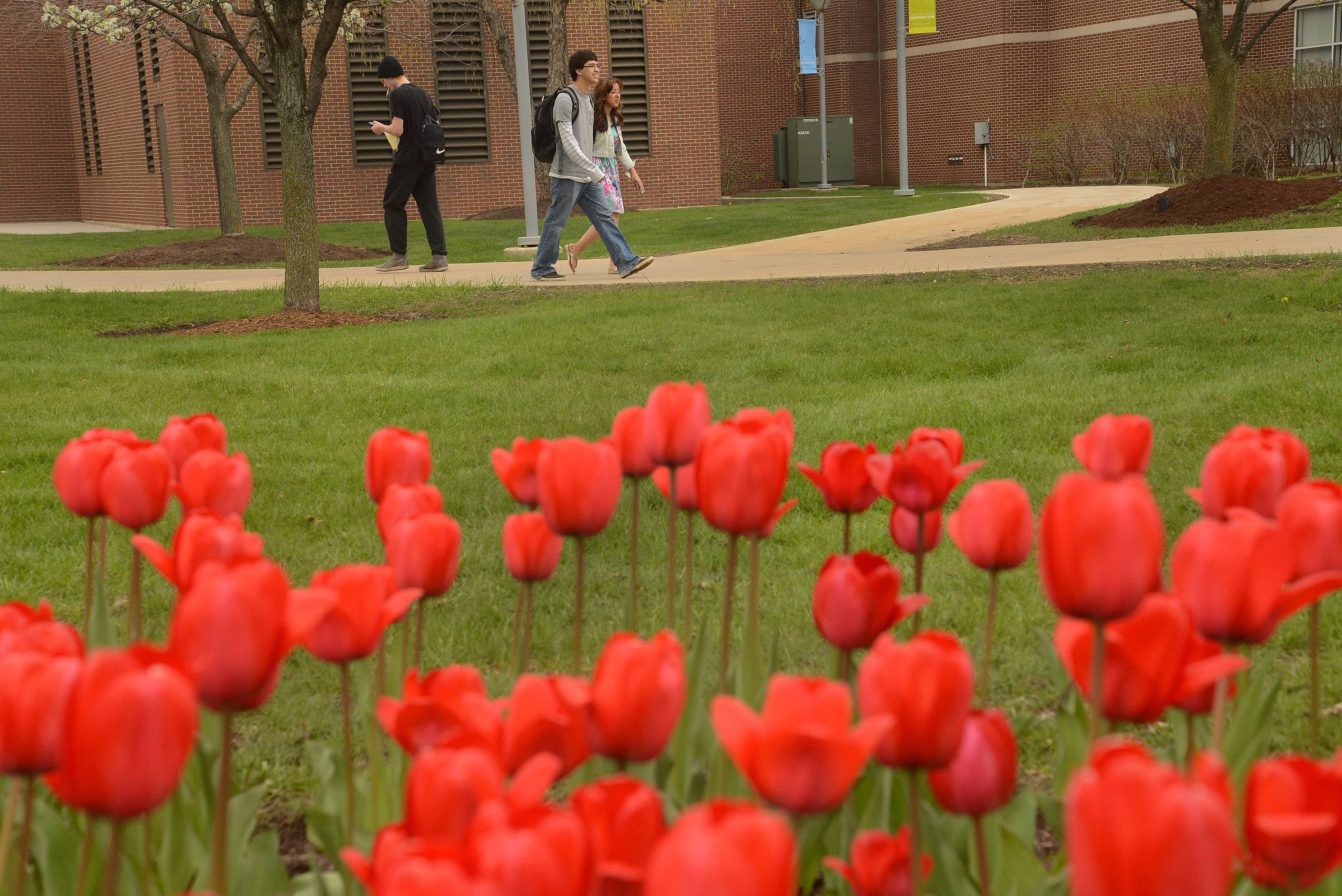 Kyle Scott and Amanda Elfar enjoy the warm weather while strolling from classes at Harper College in Palatine.