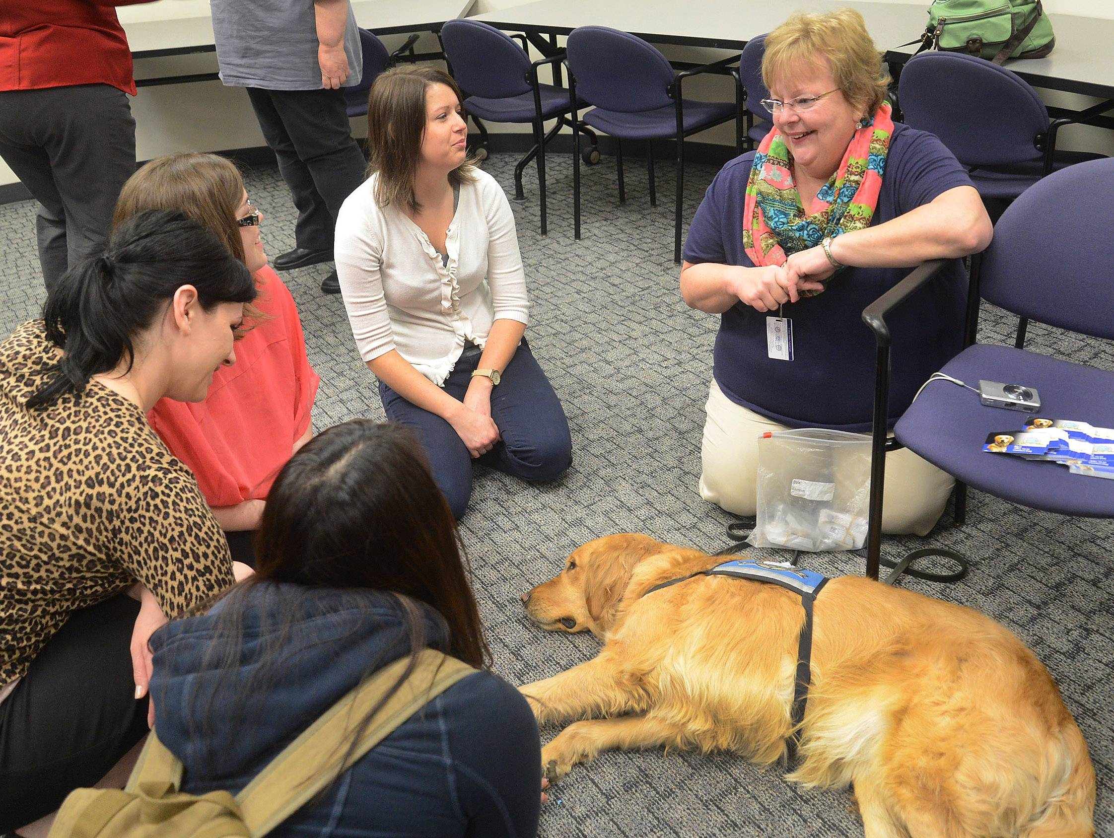 Comfort Dogs handler Libby Robertson shows off Kye, deployed Wednesday to the campus of Harper College to help de-stress students ahead of next week's finals.