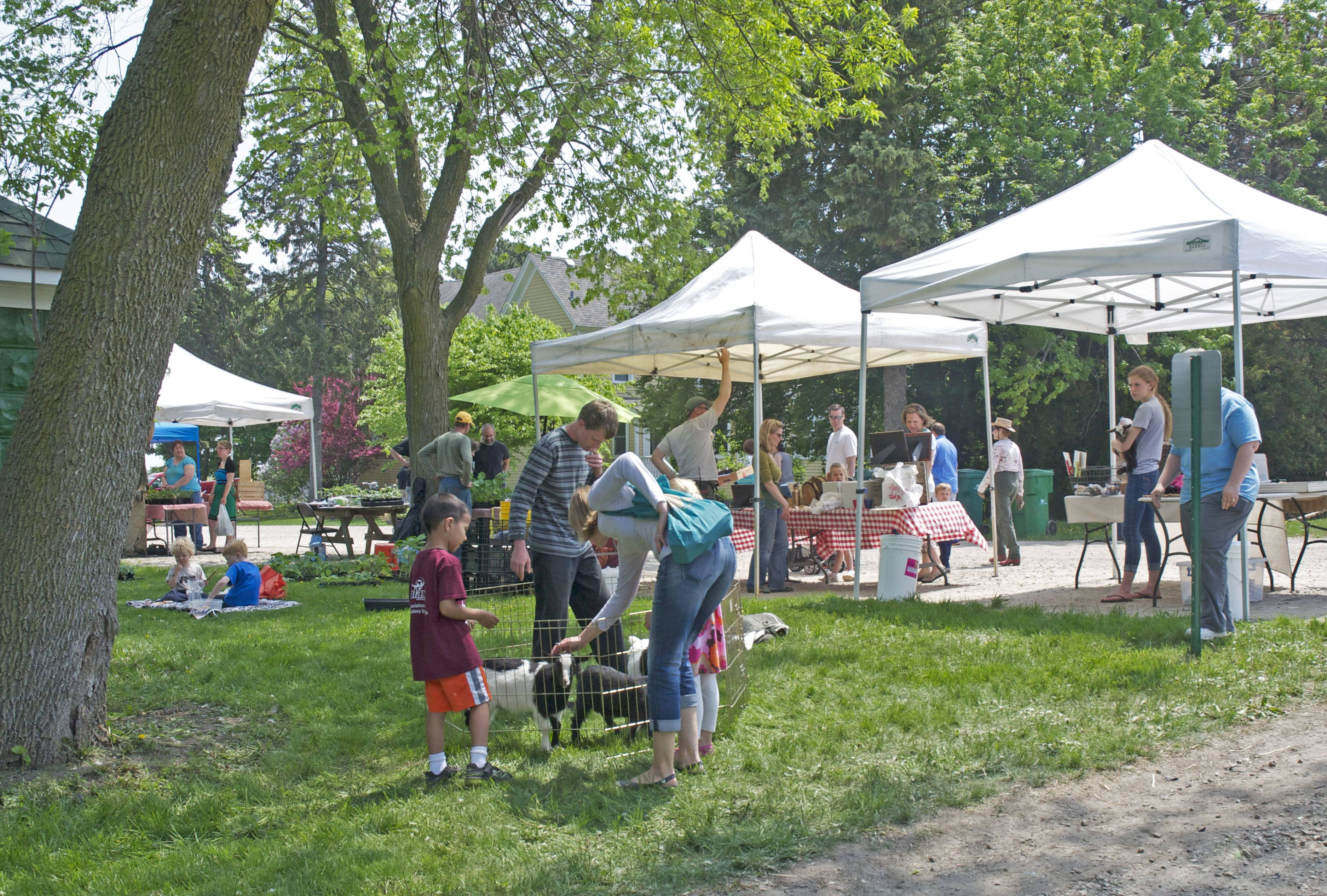 Farm visitors of all ages enjoy the May 17 Organic Plant Sale & Farm Open House at the Prairie Crossing Farm in Grayslake.MT Natarajan