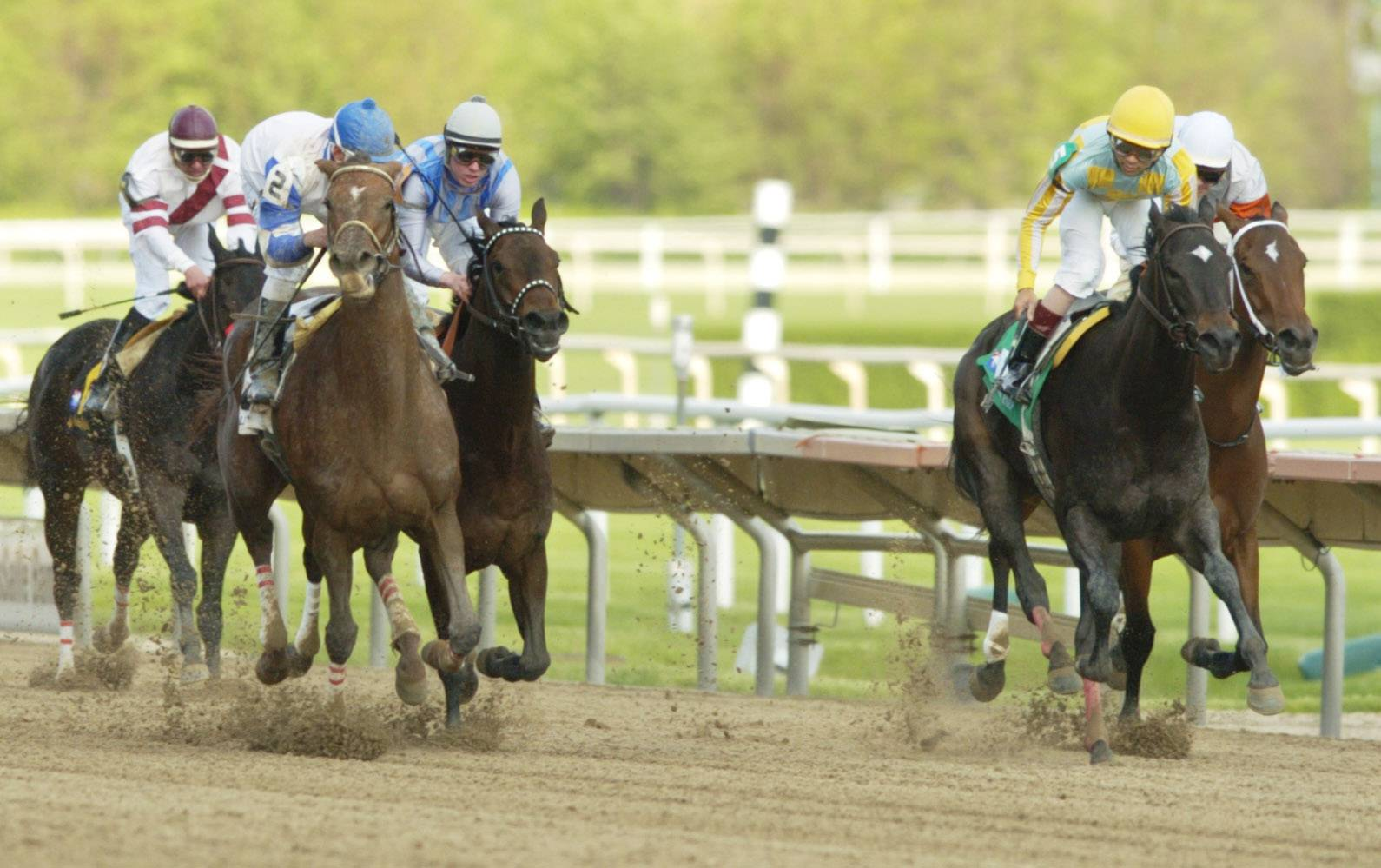 Horse racing is part of the fun at the Mother's Day celebration at Arlington International Racecourse in Arlington Heights.