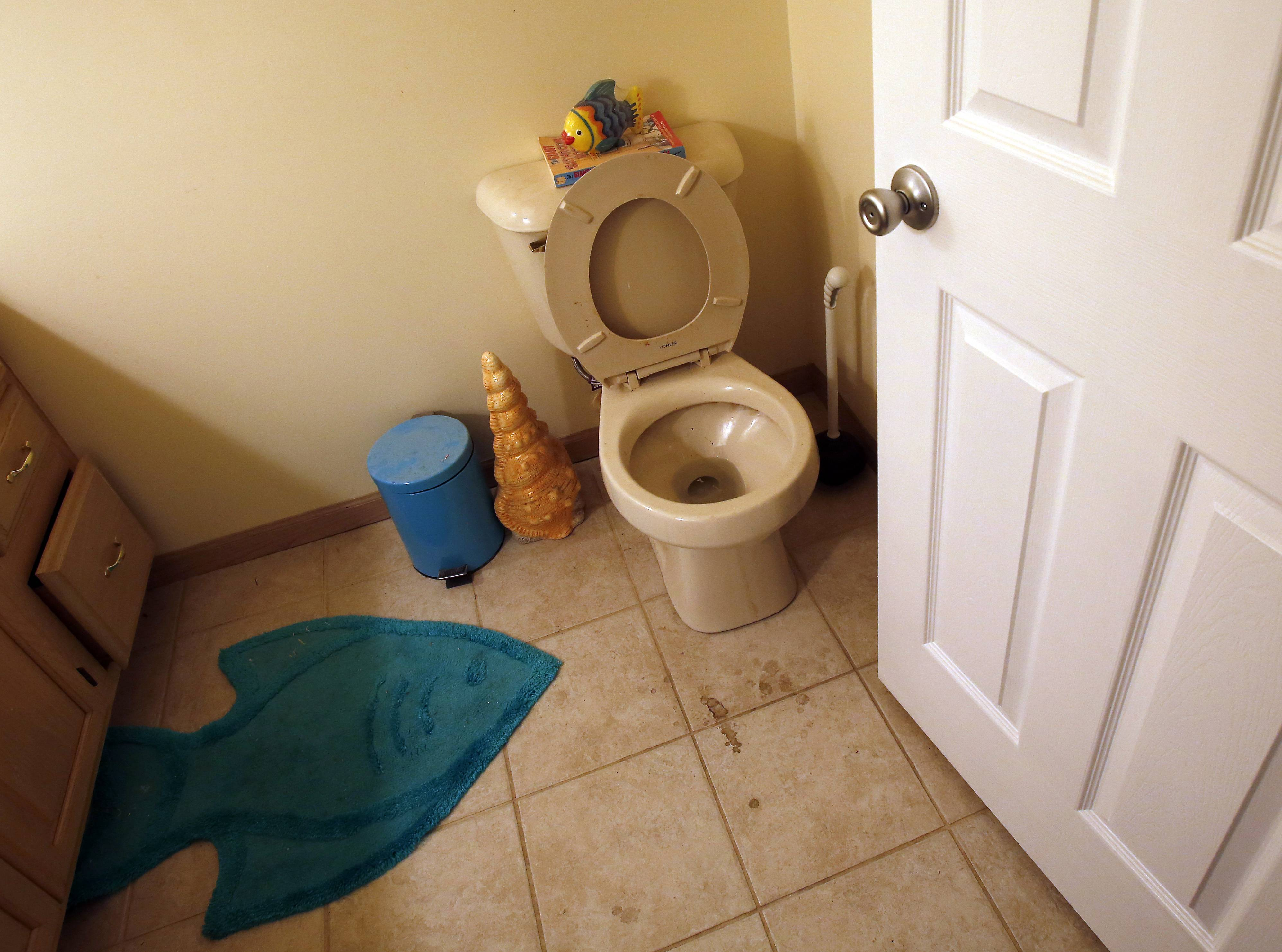 Lagenbach's basement toilet was the source of the sewer water came up in January, she says.