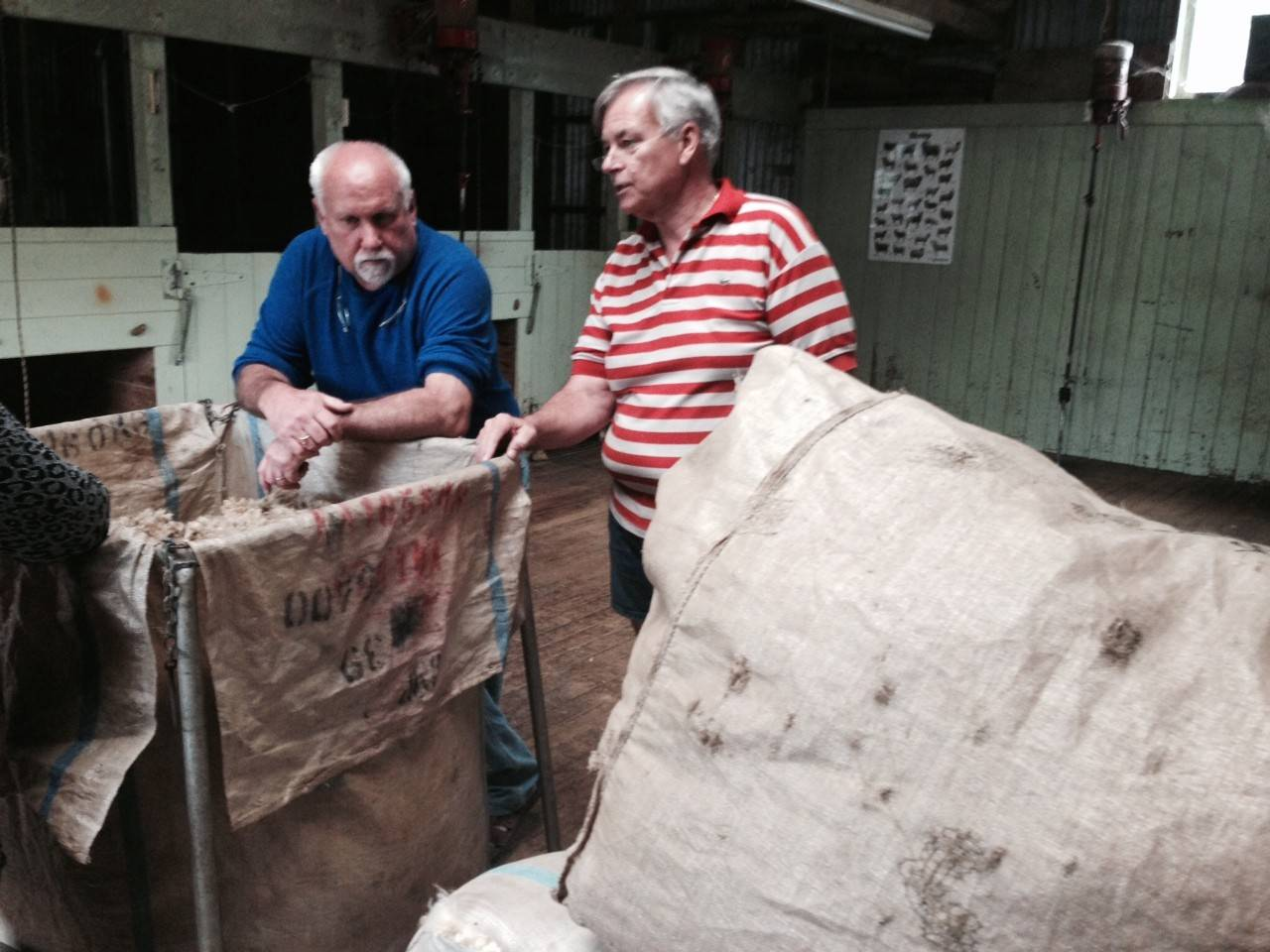 Dave Martin, at left, owner of Naperville-based Russell Martin Carpet & Rugs, talks with Ross Townshend (in stripe shirt), CEO of Wools of NewZealand, at his farm in New Zealand.