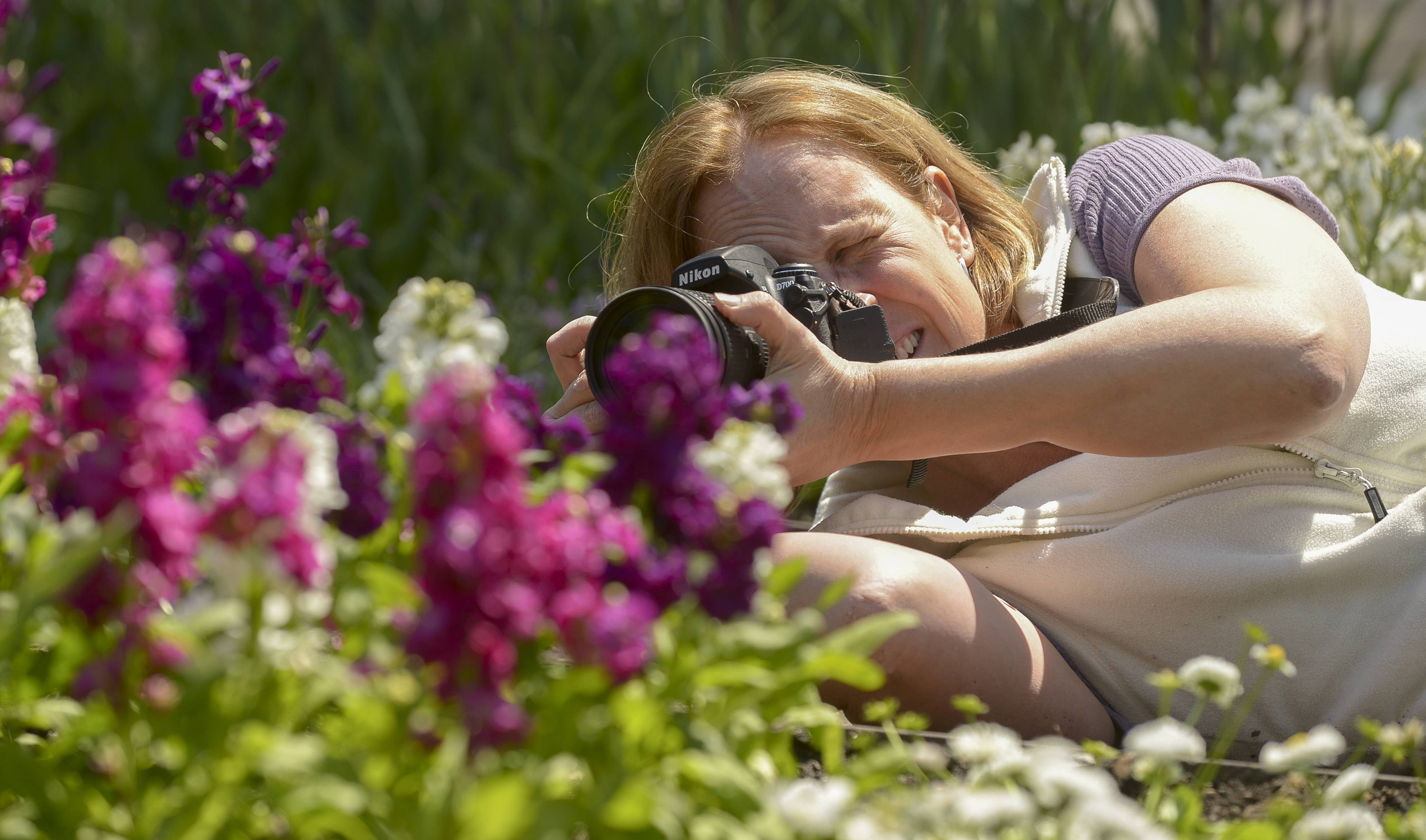 Marjorie Suto, of Elburn, gets on the ground to get a better angle while photographing flowers in Cantigny Park's Upper Bur Oak Garden, Tuesday.