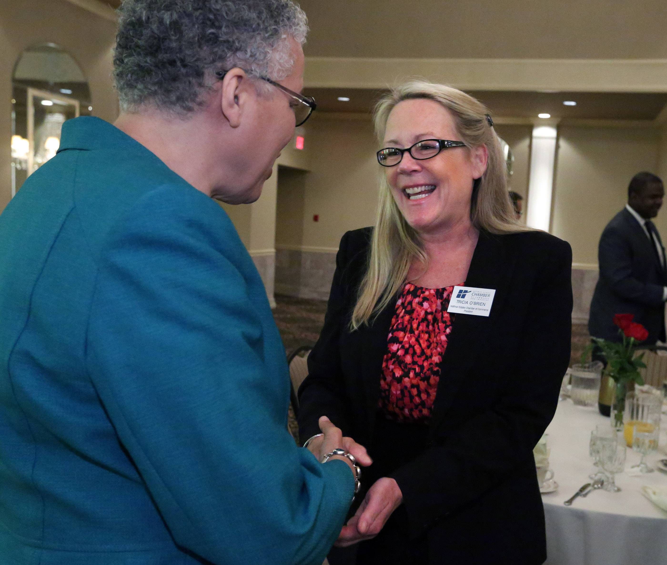 Hoffman Estates Chamber of Commerce President Tricia O'Brien meets with Cook County Board President Toni Preckwinkle Tuesday.