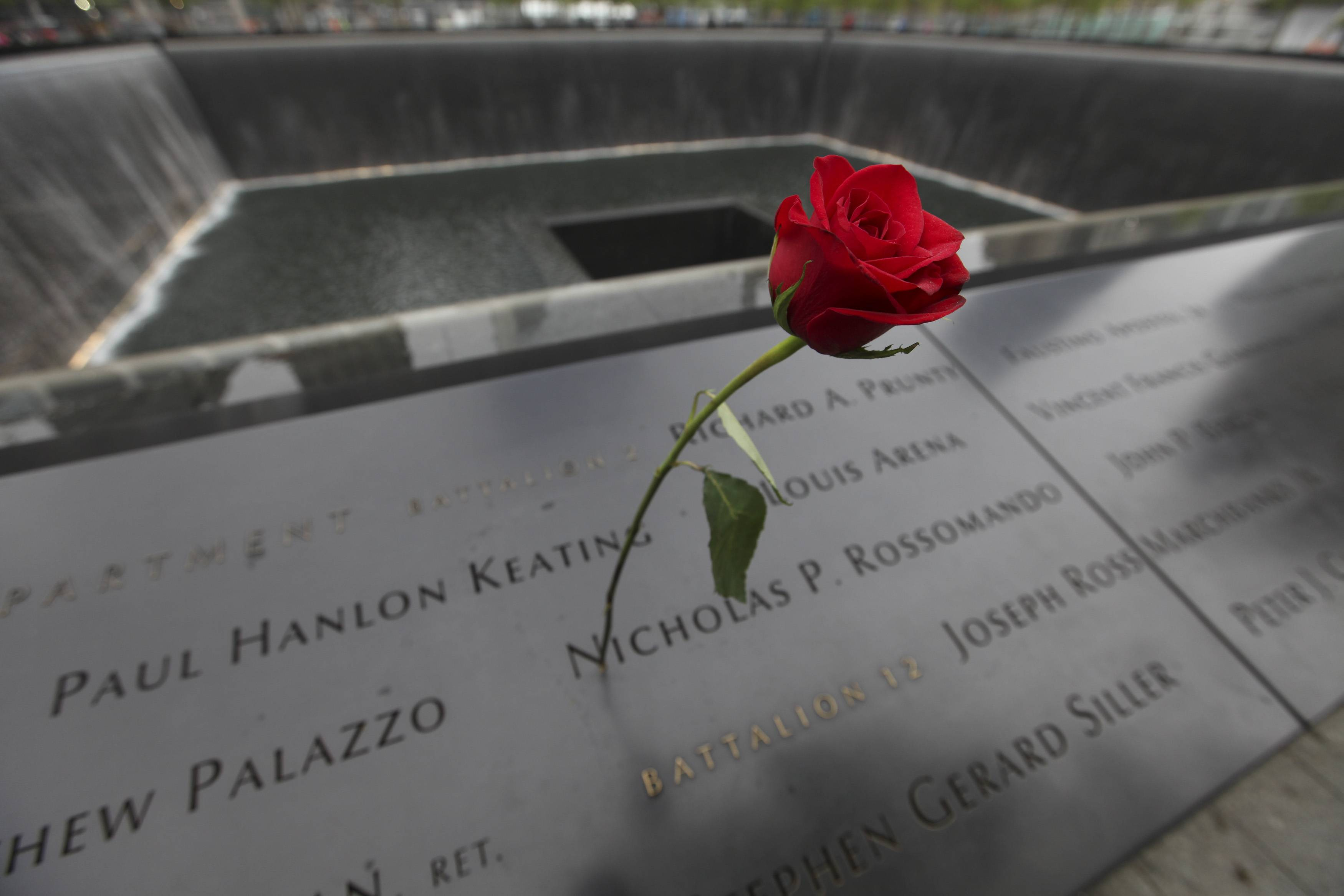 A rose is placed on a name engraved along the South reflecting pool at the Ground Zero memorial site during the dedication ceremony.