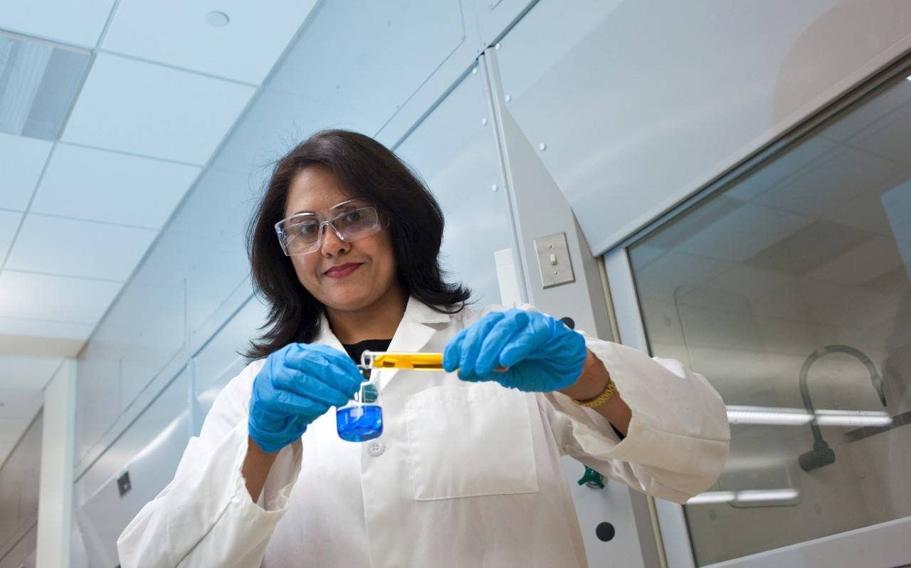 Lubna Haque, associate professor of chemistry at College of DuPage, has been named the Overall Outstanding Faculty Member for 2013-2014.