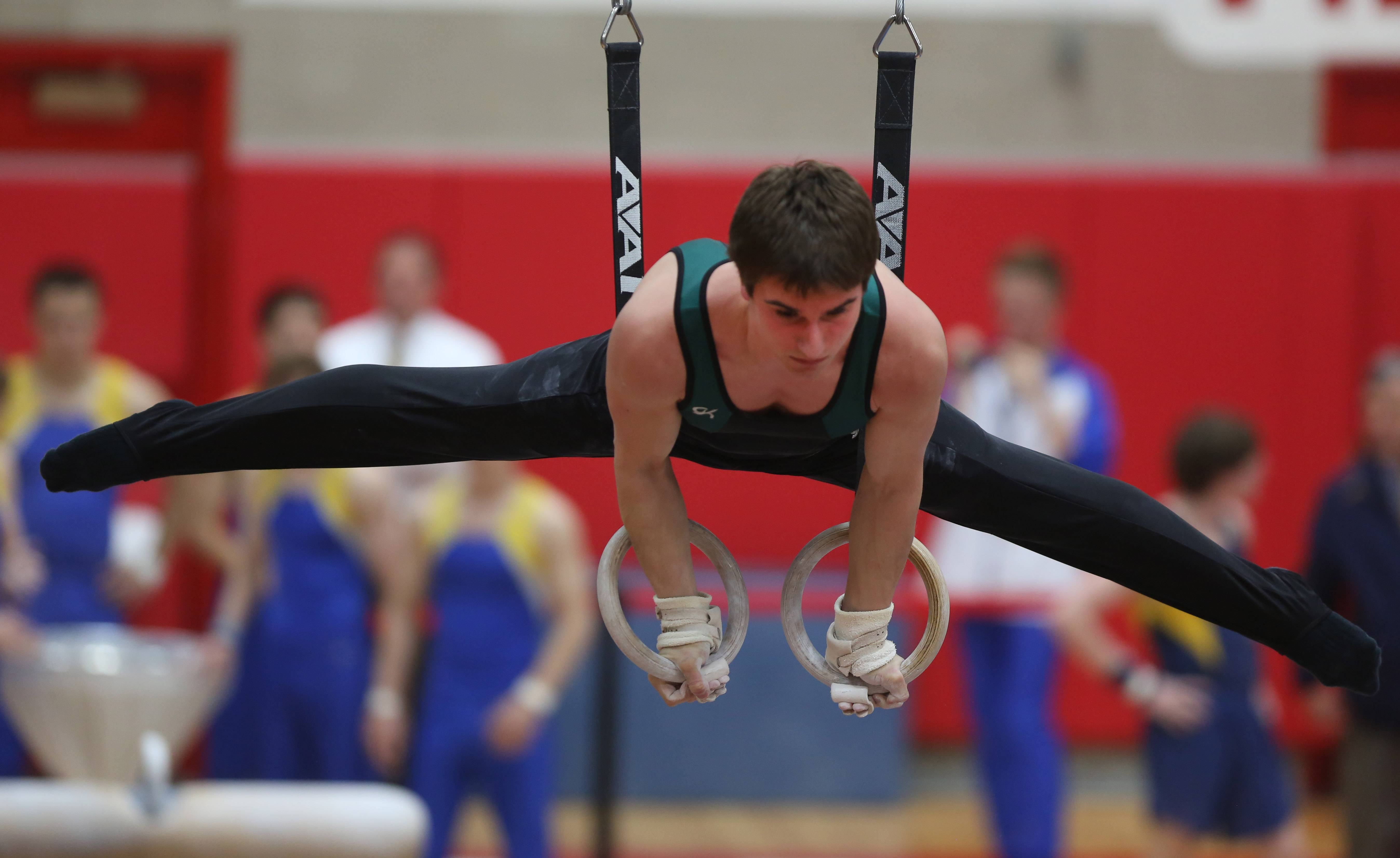 Stevenson's Zack Gilbert performs his still rings routine during the boys gymnastics state meet Friday at Hinsdale Central.