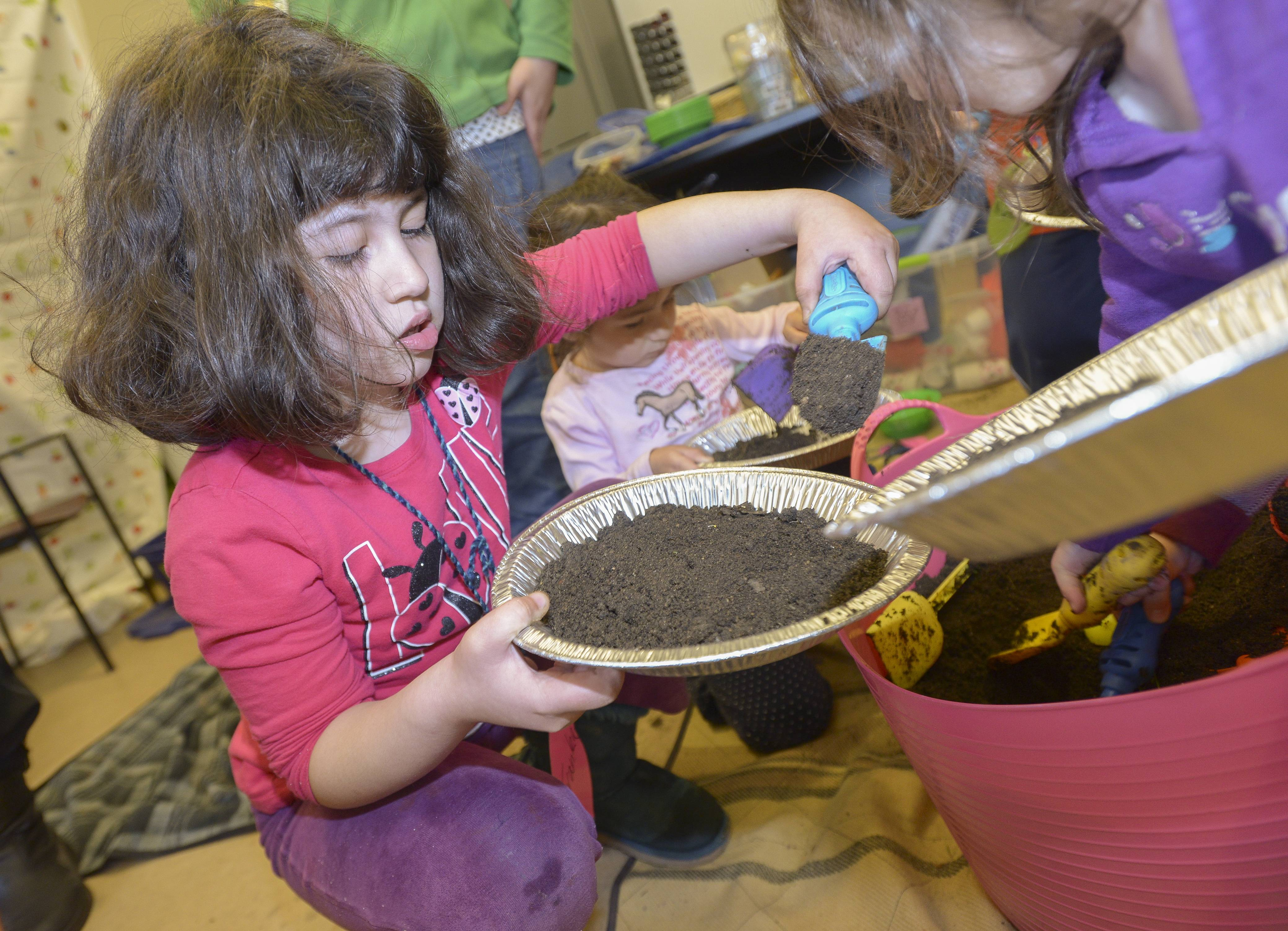 "Franka Aguilar, 6 of Warrenville lays down a base of soil for her mud pie during the Morton Arboretum's ""Mudpies and Stone Soup"" class."