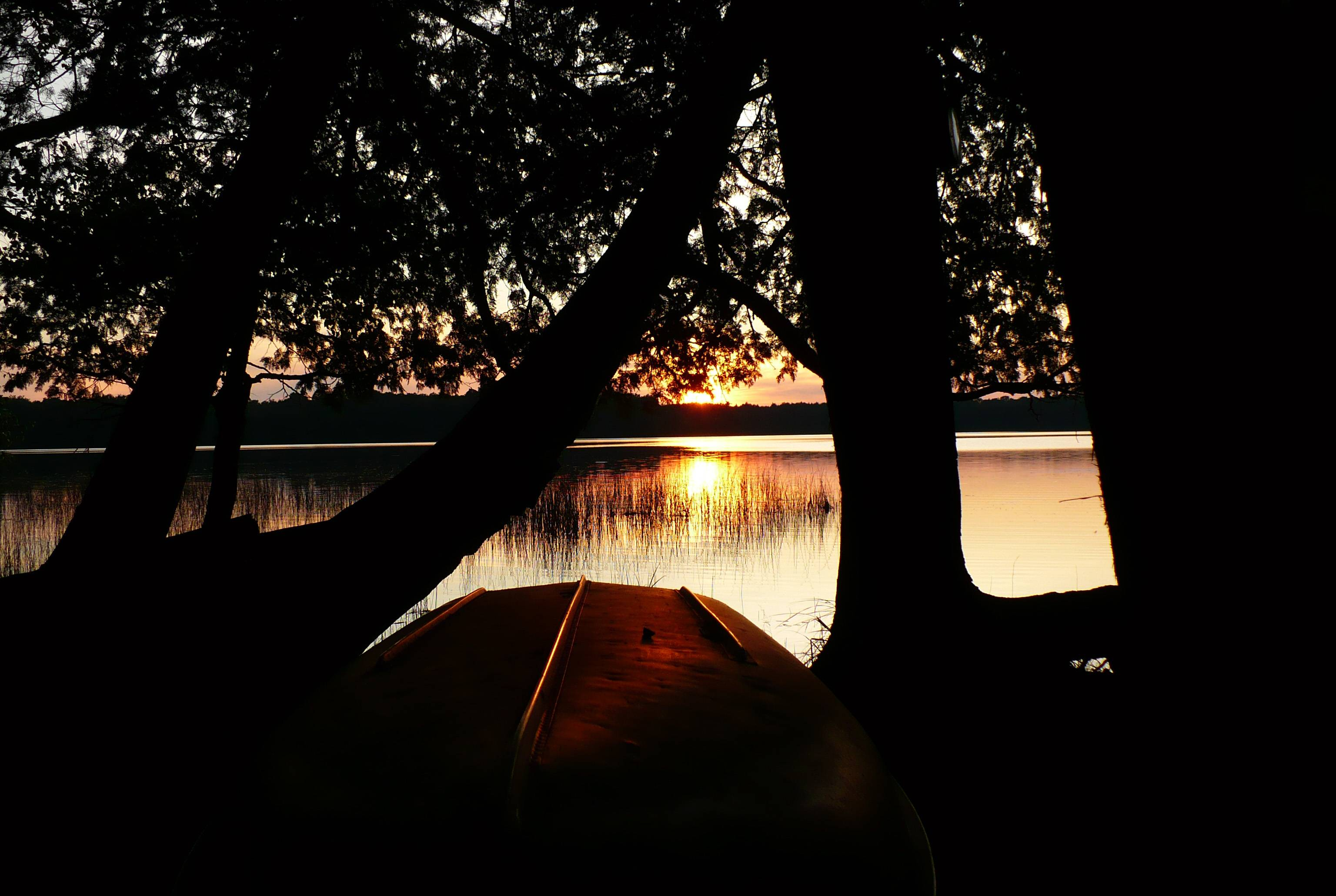This was taken on Palmer Lake in northern Wisconsin. I liked the way the pines looked dark as they framed the image of the setting sun on the lake and its reflection on the bottom of the boat.