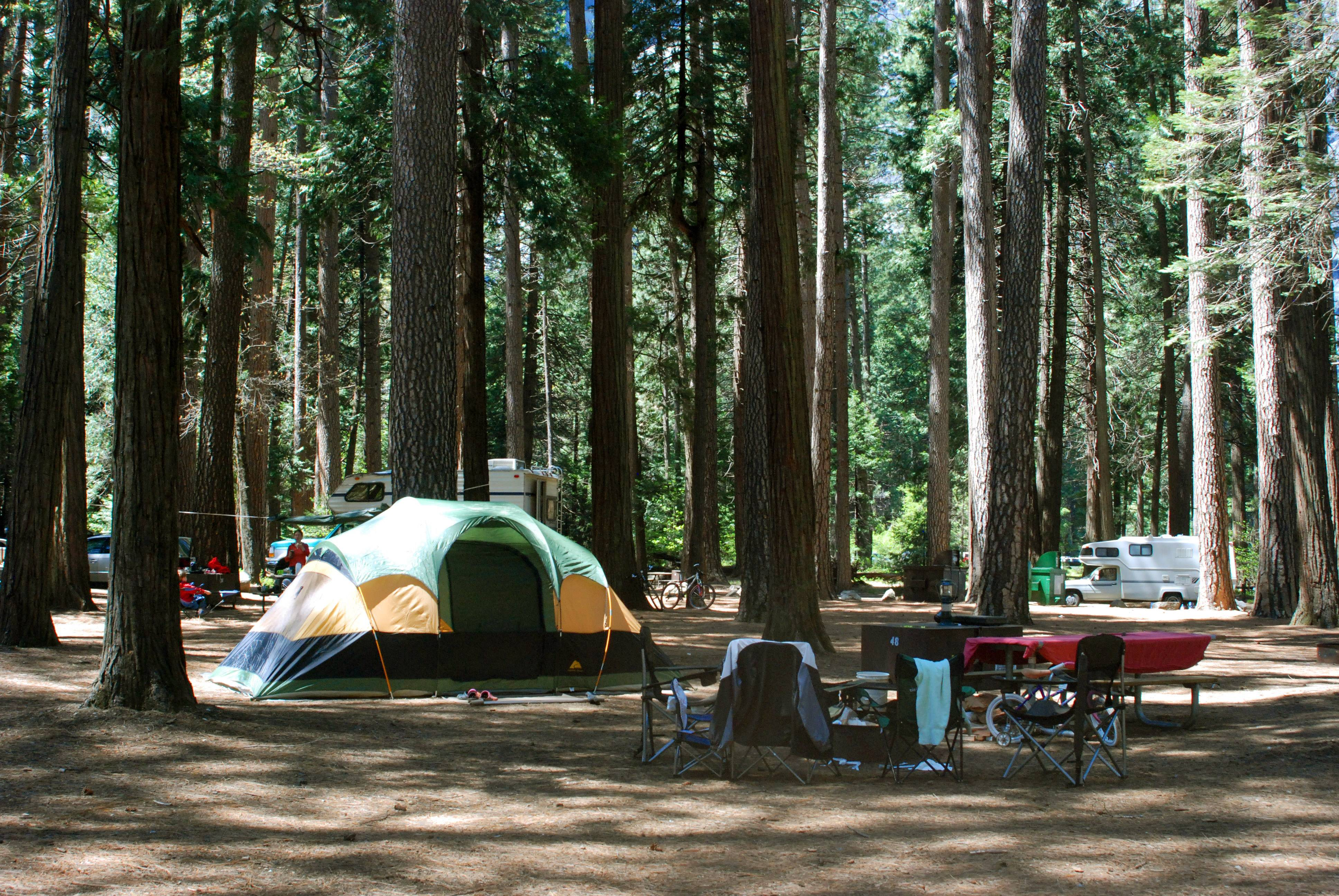Camping, such as at Yosemite National Park in California, can bring new experiences and give you a chance to de-stress in the open air.