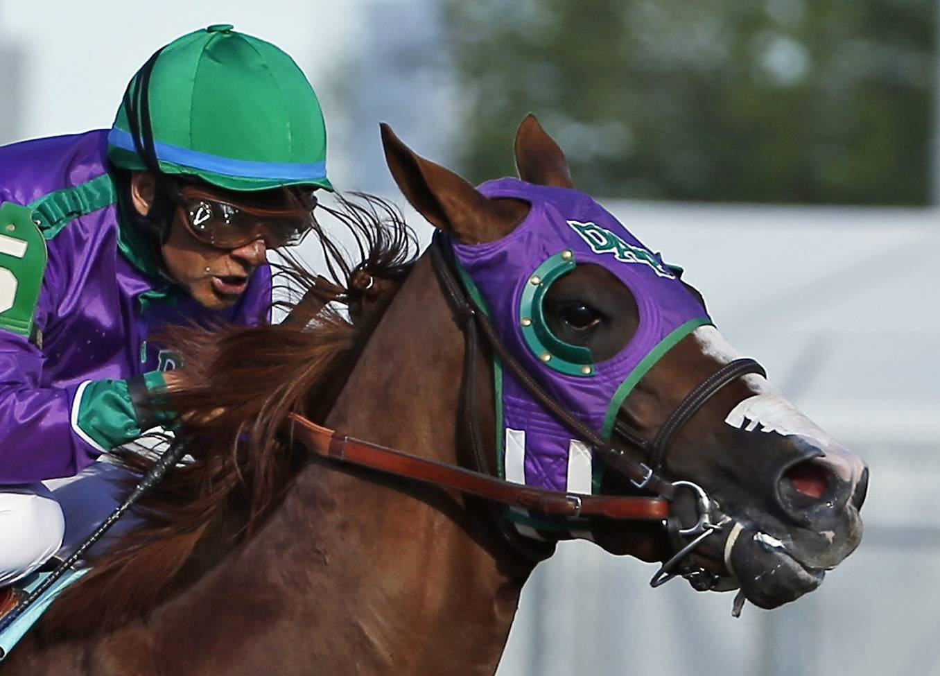 In this May 3, 2014, file photo, jockey Victor Espinoza rides California Chrome to win the Kentucky Derby at Churchill Downs in Louisville, Belmont Park officials said Monday they will allow the colt to wear a nasal strip in the Belmont Stakes.