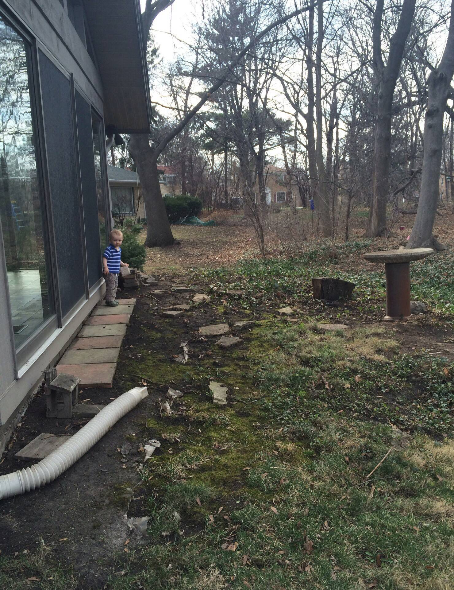 Beth Schirott of Wheaton says her backyard has potential.
