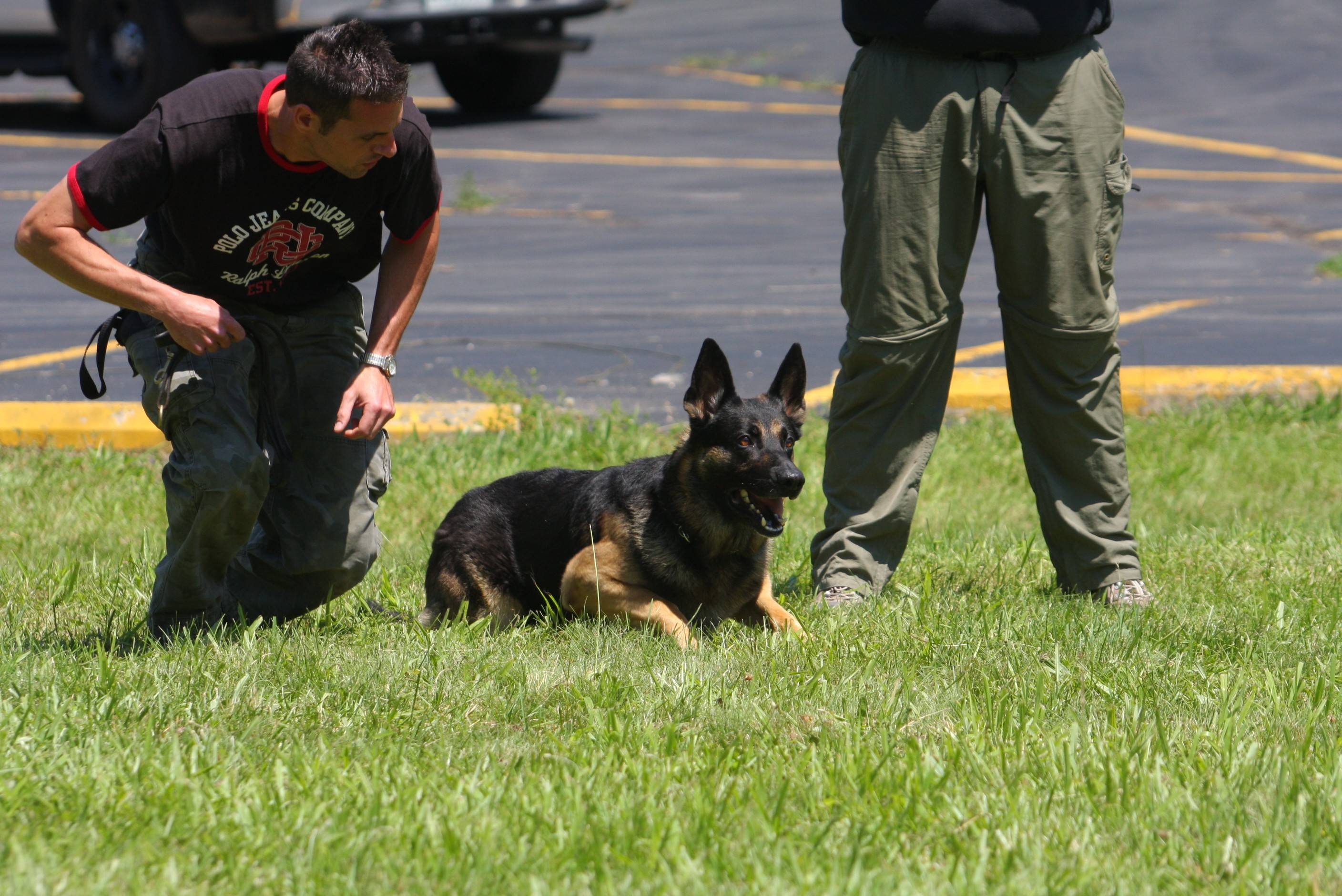Bartlett police officer Michael Kmiecik kneels beside Brewster during a 2008 certification test in aggression control.