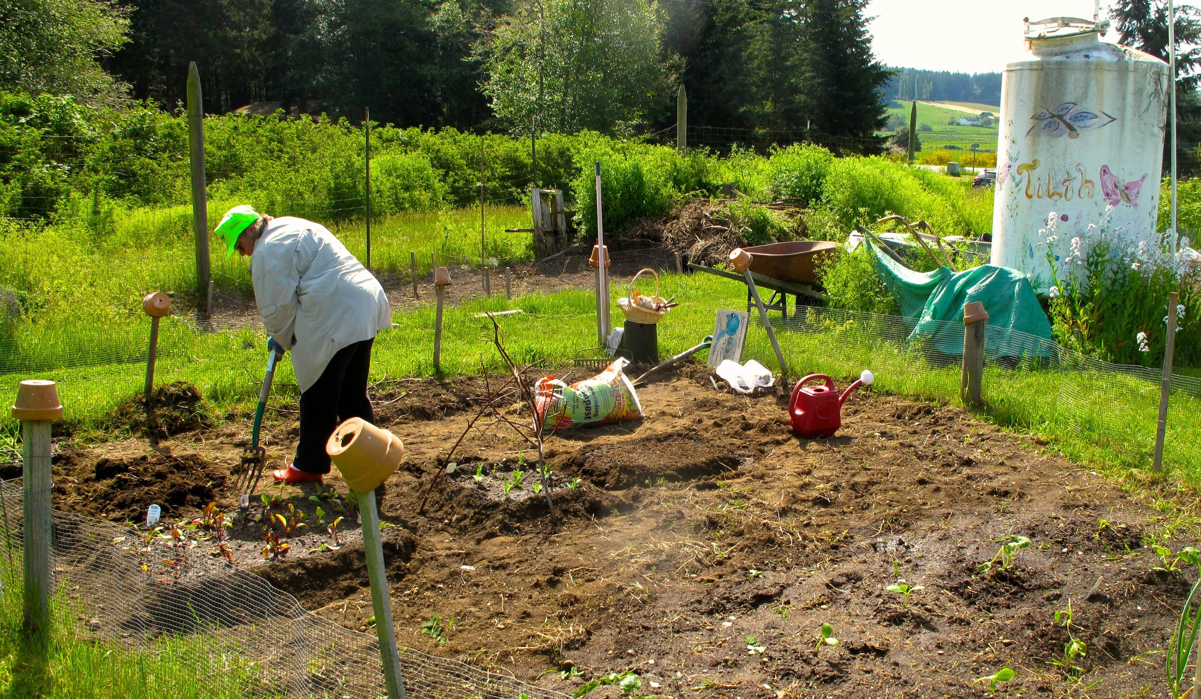 A woman prepares planting beds in her personal plot at the South Whidbey Tilth Community Garden near Freeland, Wash. Gardeners can reserve a 20-foot by 20-foot space for a $50 annual fee, and must use organic growing methods and materials. The gardeners can keep what they grow but are encouraged to share in caring for the communal parts of the garden.