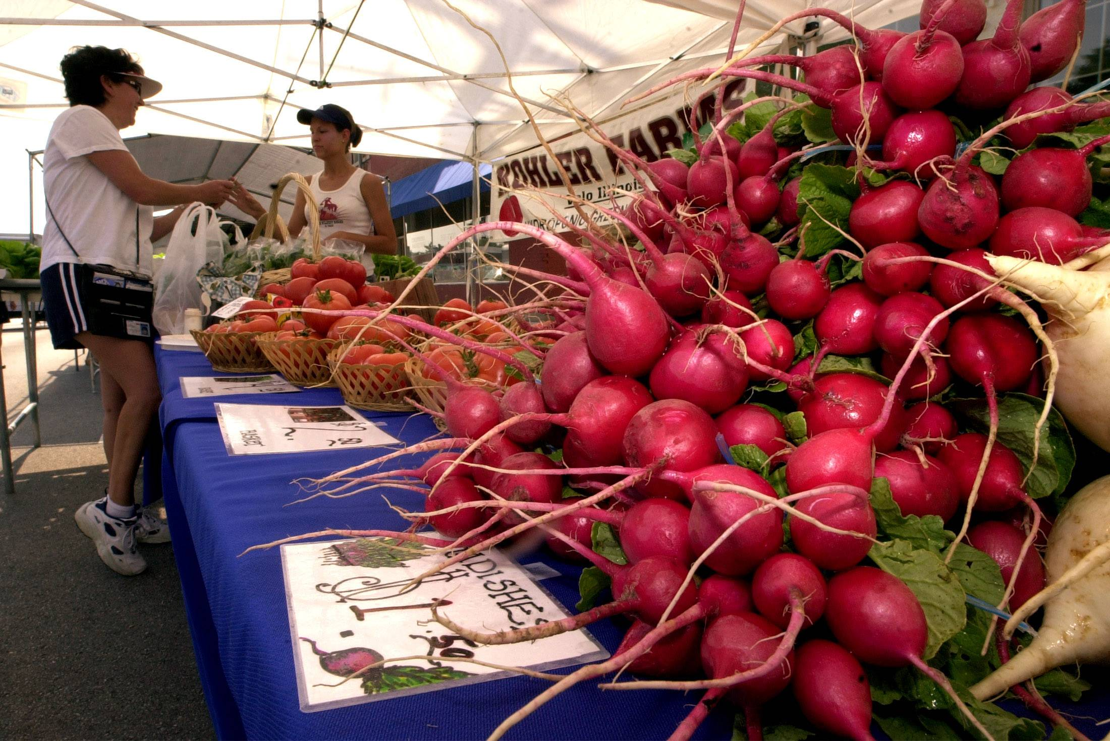 Legislation that would allow the Illinois Department of Health to create a single set of food-safety standards for farmers markets has been passed by both houses of the General Assembly.