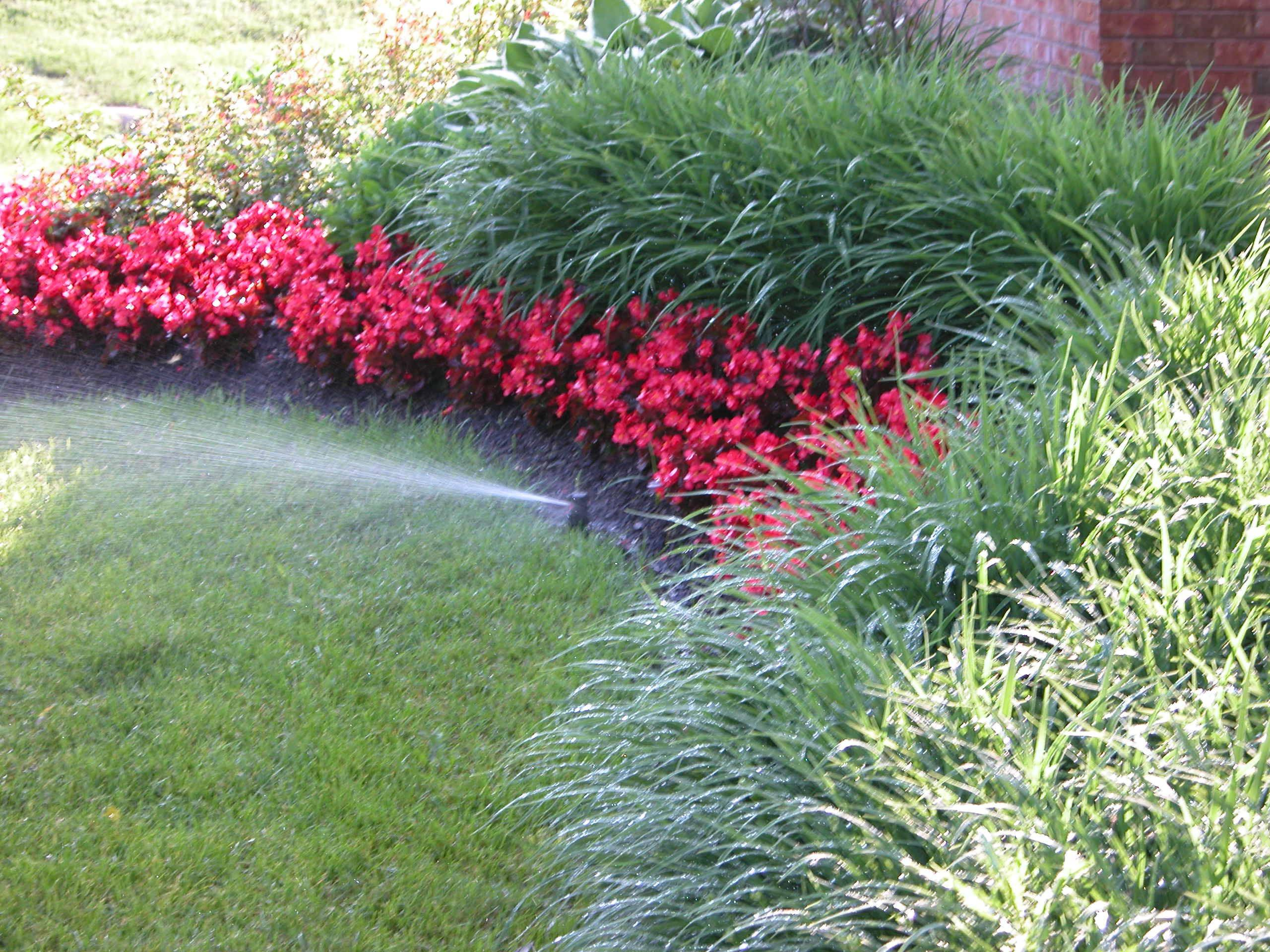 Irrigation systems allow for lawns to be watered prperly without wasting water. Some systems are even connected to weather.com for more accurate water usage, said Colin Taheny of RYCO Design Group.
