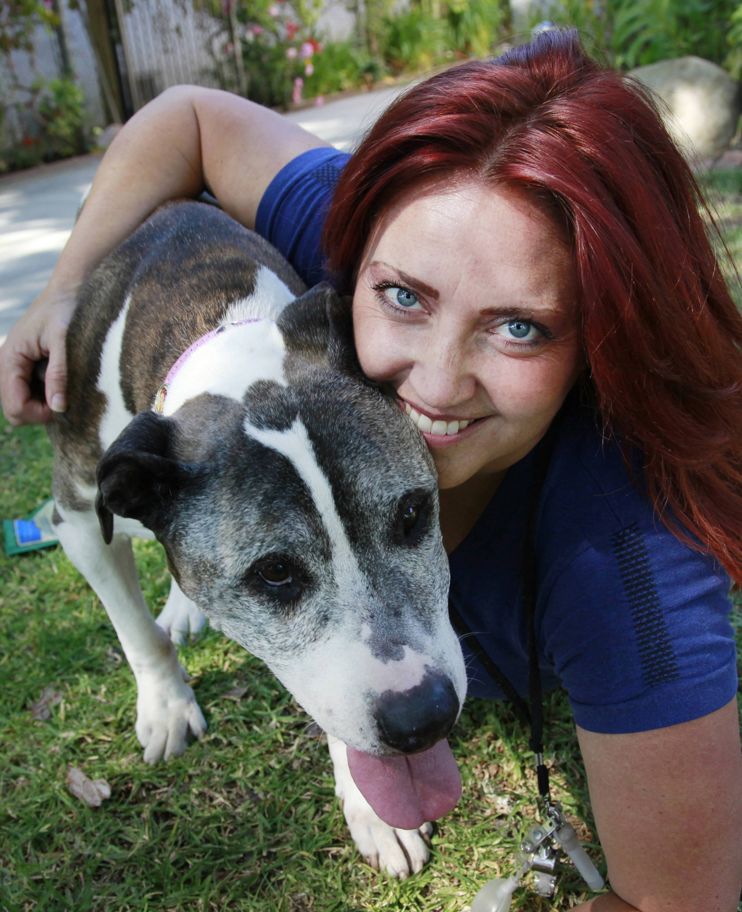 "In this Friday, May 2, 2014 photo, pet photographer Lori Fusaro shares a moment with Sunny, her 18-year-old pit bull terrier, in the Los Angeles suburb of Culver City, Calif. Fusaro is set to publish a book called ""My Old Dog"" in the spring of 2015. She's shot thousands of photos for Los Angeles Animal Services, which puts old (and young) dogs on their website in hopes they will attract exactly the right owner."