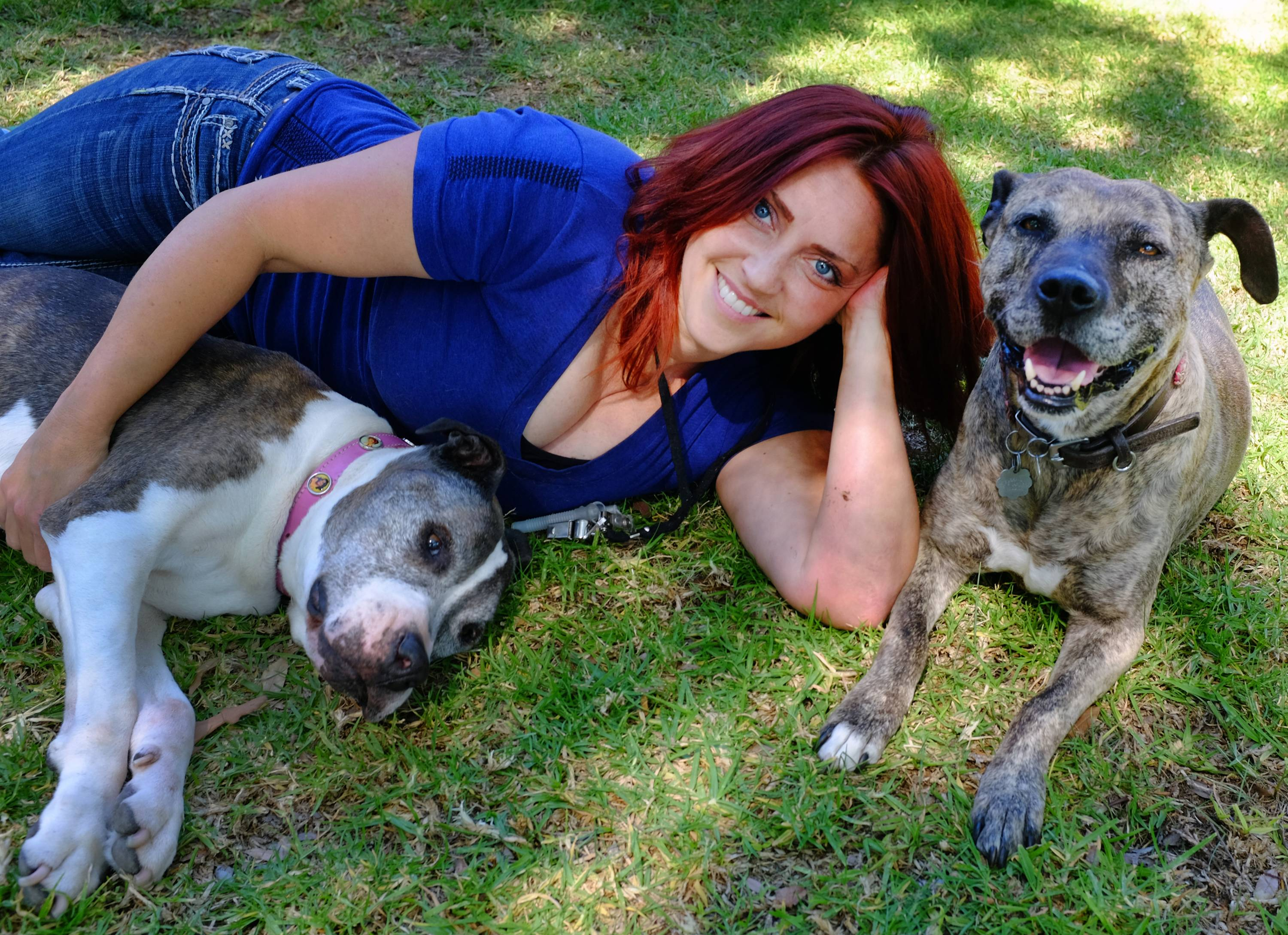 "This Friday, May 2, 2014 photo Lori Fusaro sits with Sunny, right an 18 year old Pit Bull and Gabi, 11, in the Culver City section of Los Angeles. Fusaro is set to publish a book called ""My Old Dog"" in the spring of 2015. She's shot thousands of photos for Los Angeles Animal Services, which puts old (and young) dogs on their website in hopes they will attract exactly the right owner."