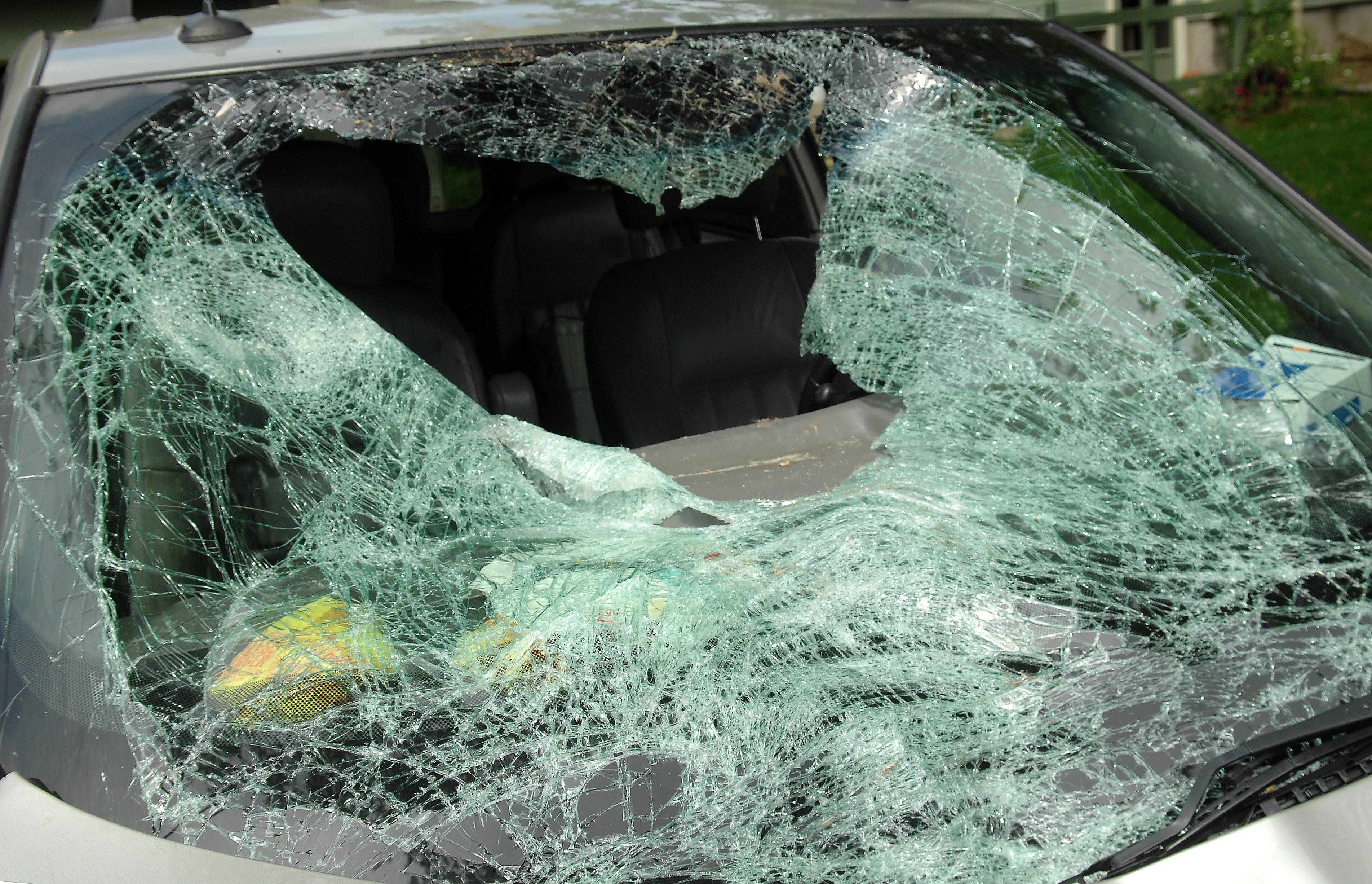 A deer plunged through the windshield of Heidi Conner's minivan Sunday afternoon as she drove on the Jame Addams Tollway. The West Dundee woman and four children riding with her escaped serious harm.