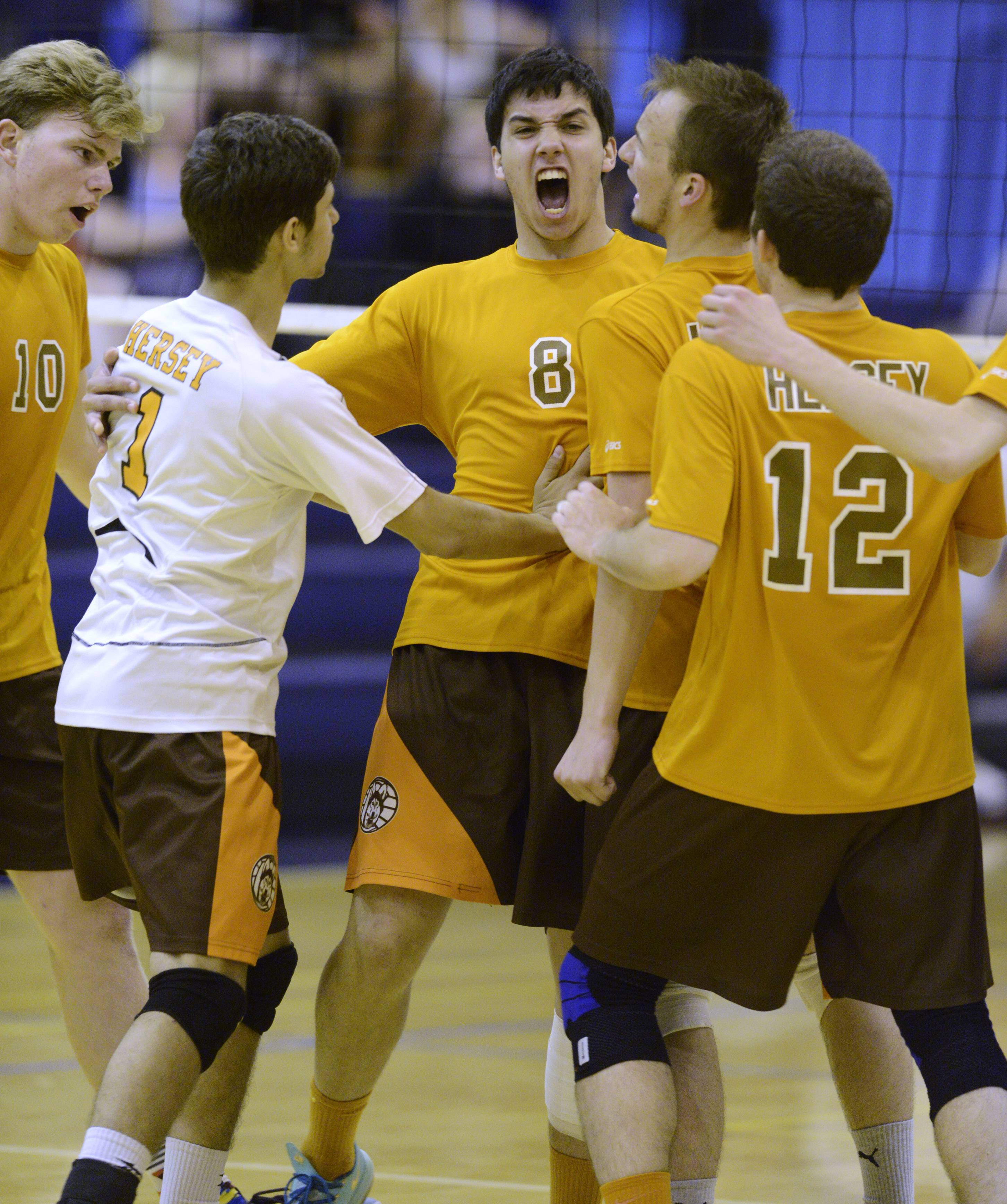 Hersey's Jordan Saeed, middle, celebrates a key third-set point with his teammates during Wednesday's regional final against Prospect.