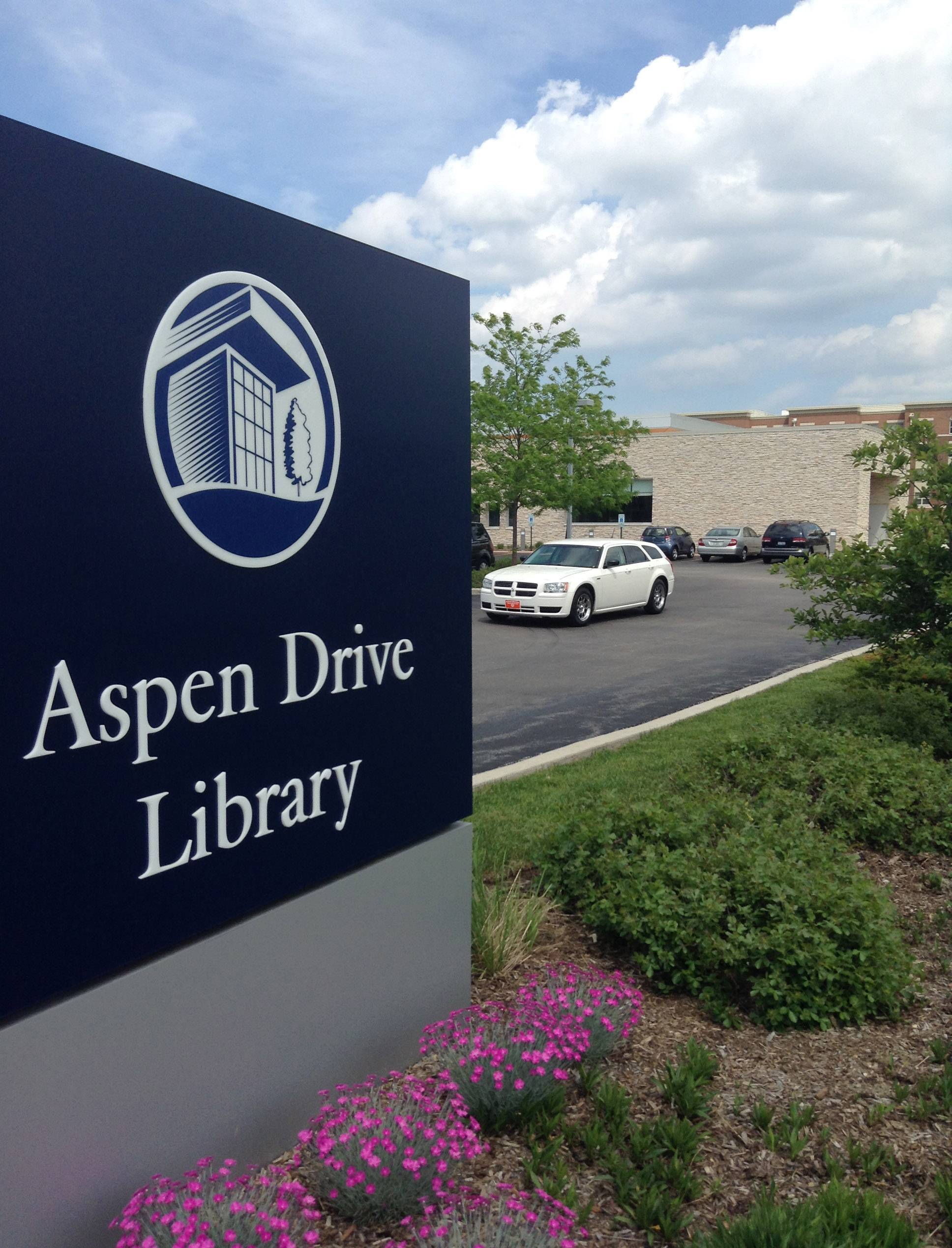 The Aspen Drive Library in Vernon Hills has an immediate need for more parking, officials say.