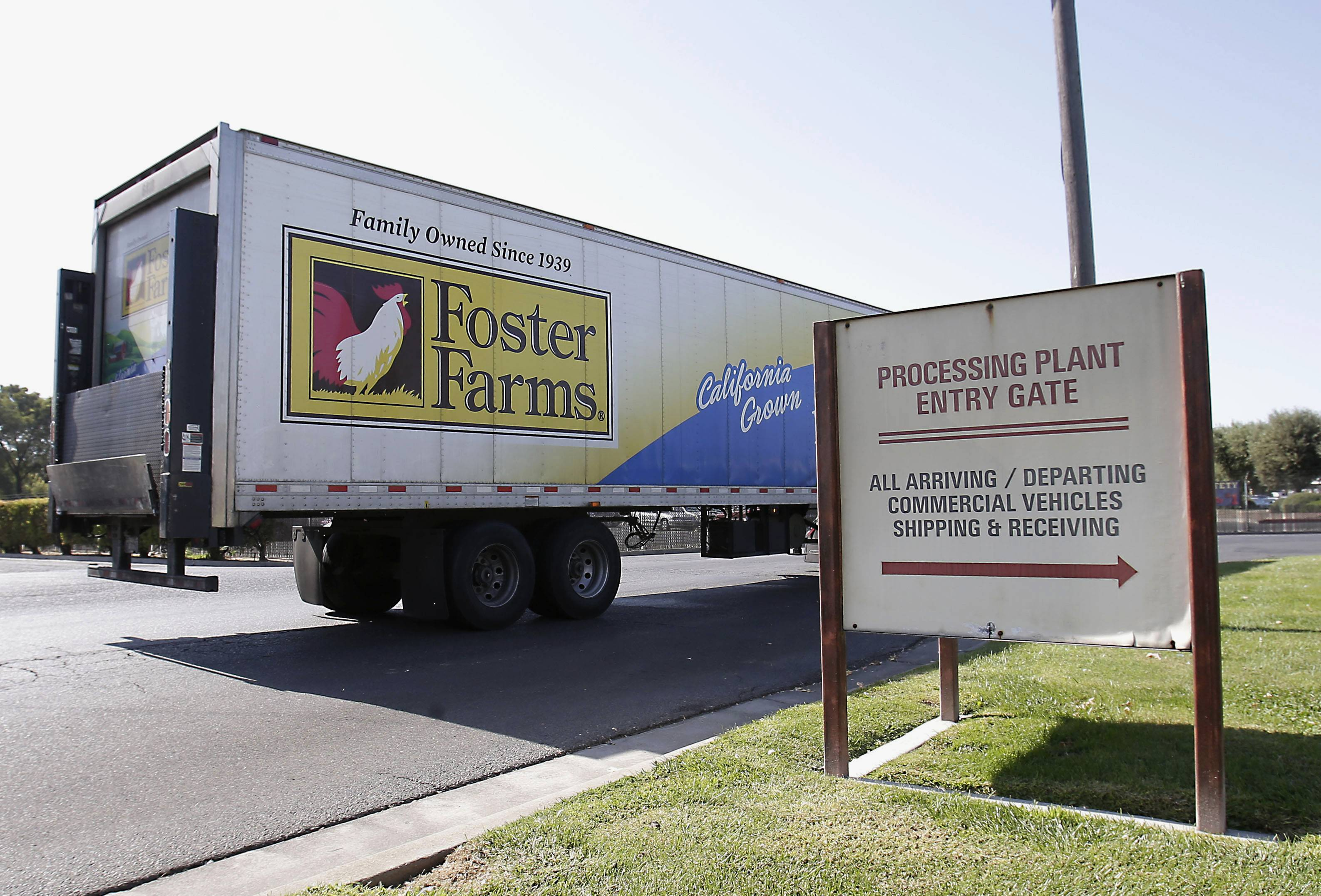 Foster Farms processing plant in Livingston, Calif. An outbreak of antibiotic-resistant salmonella linked to a California chicken company is ongoing after more than a year, with 50 new illnesses in the last two months and 574 sickened since March 2013.