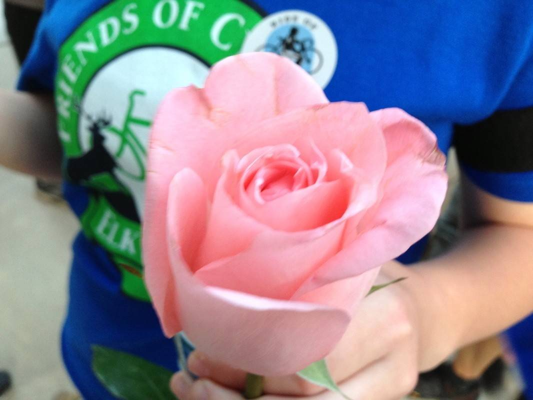 Dozens of roses were provided to Ride of Silence participants at the end of the ride.