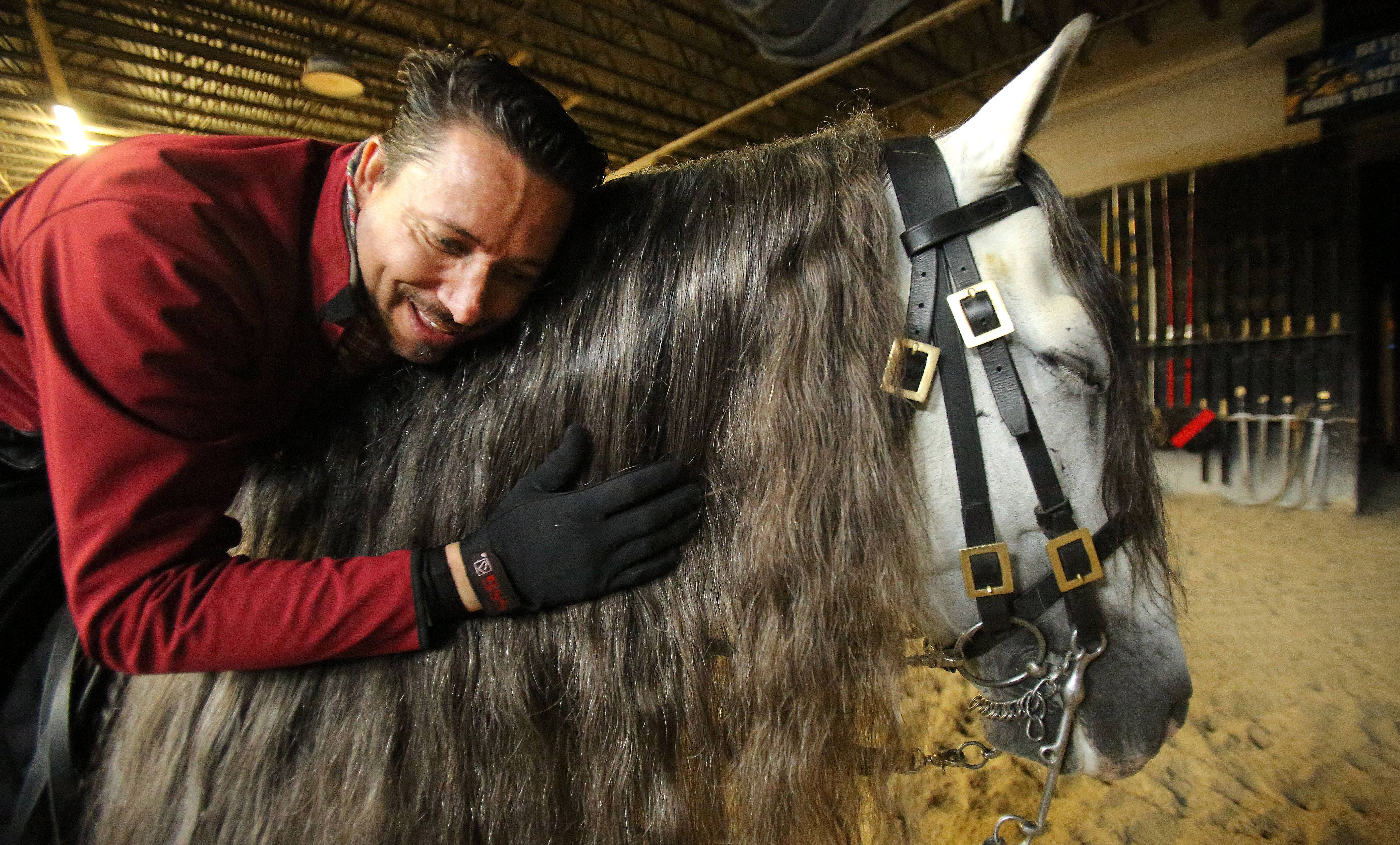 Moving picture: Elgin man trains 'Medieval' stallions
