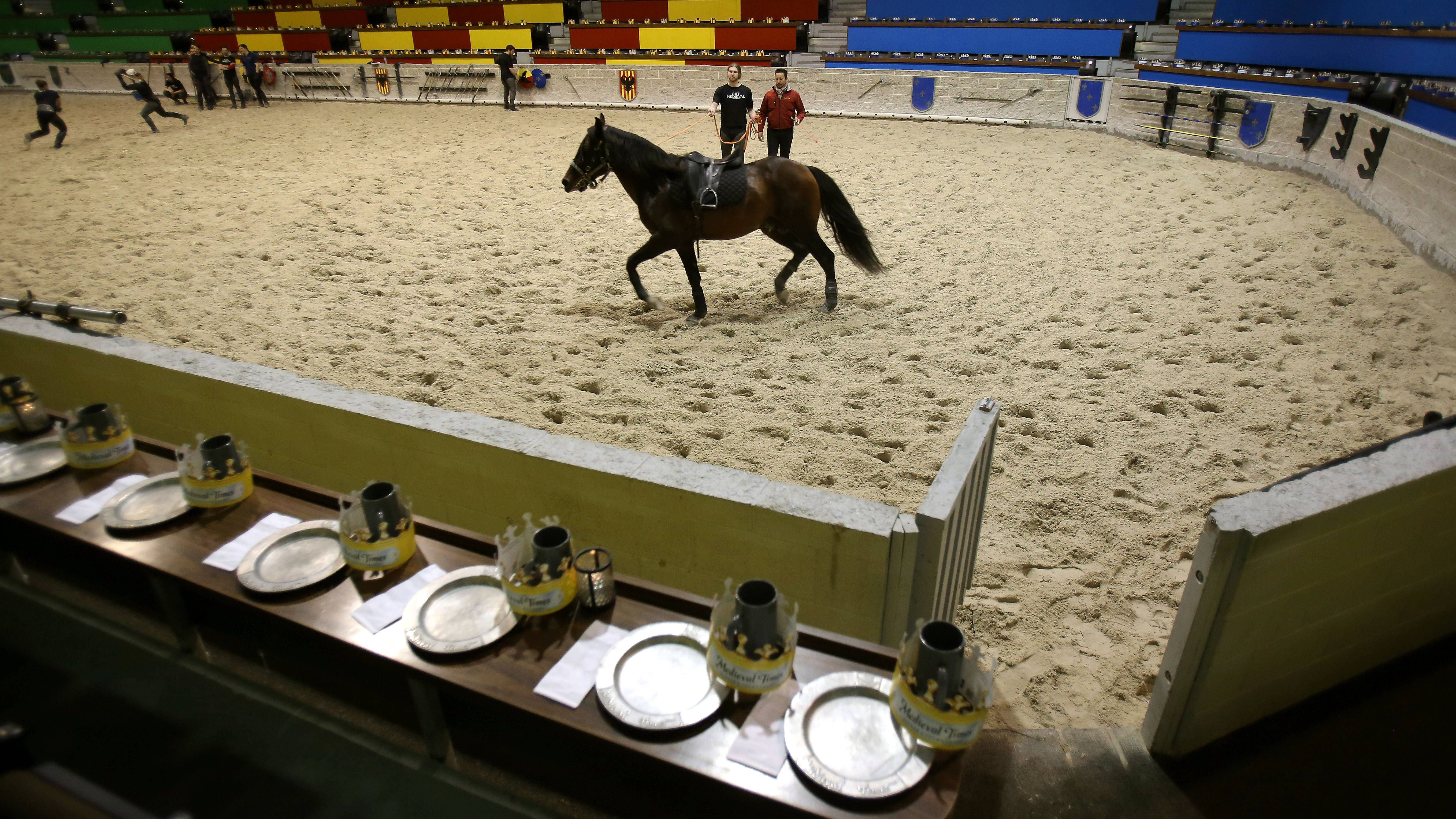 Above, Contreras rehearses with the horse before a show in Hoffman Estates. Below, he takes a horse through training at Medieval Times.