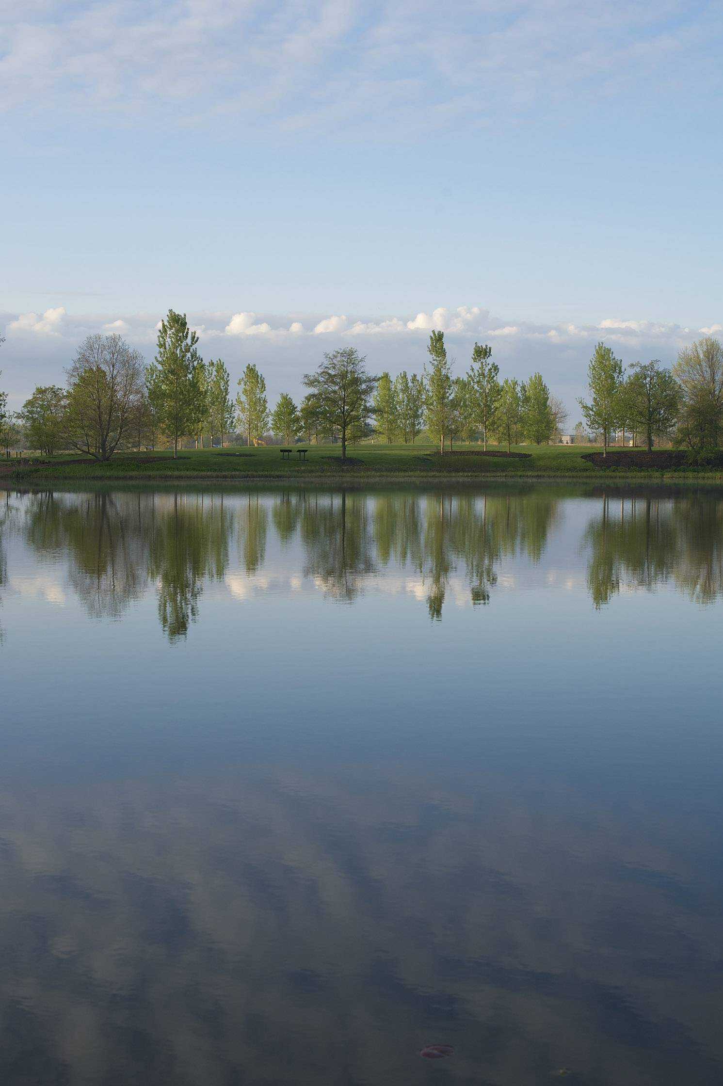 Beautiful blue skies and billowy clouds reflect in a lake at the Chicago Botanic Gardens in Glencoe.