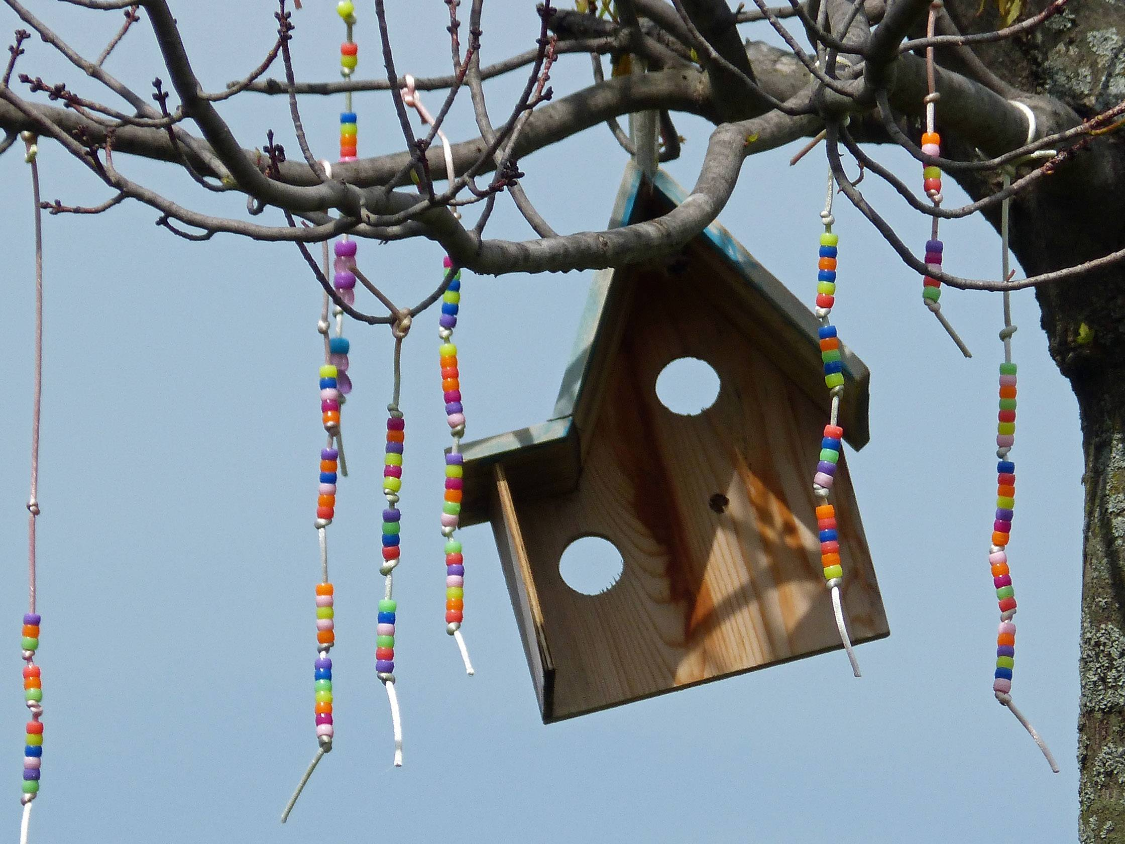 In a whimsical play of nature, a Wheeling naturalist hung a quaint birdhouse feeder amidst colorful beads.