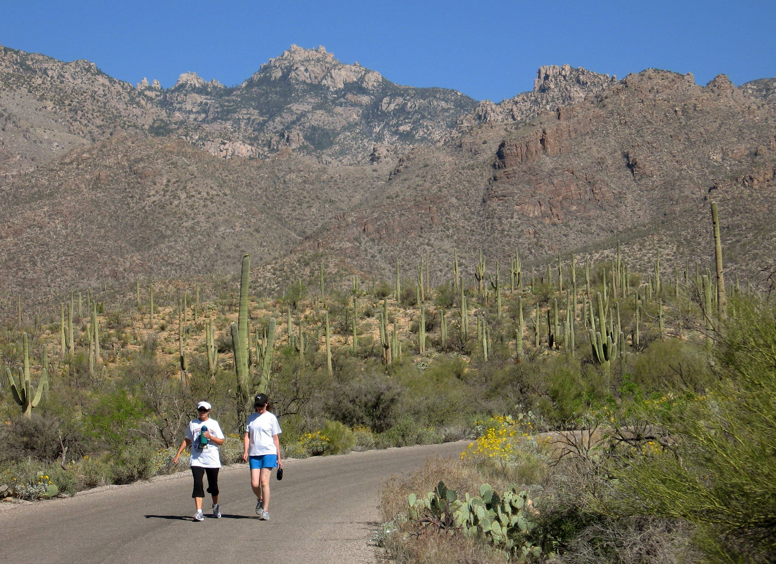Hikers in Sabino Canyon Recreation Area just north of Tucson, Ariz., enjoy sunshine, scenery and peaceful hiking trails.